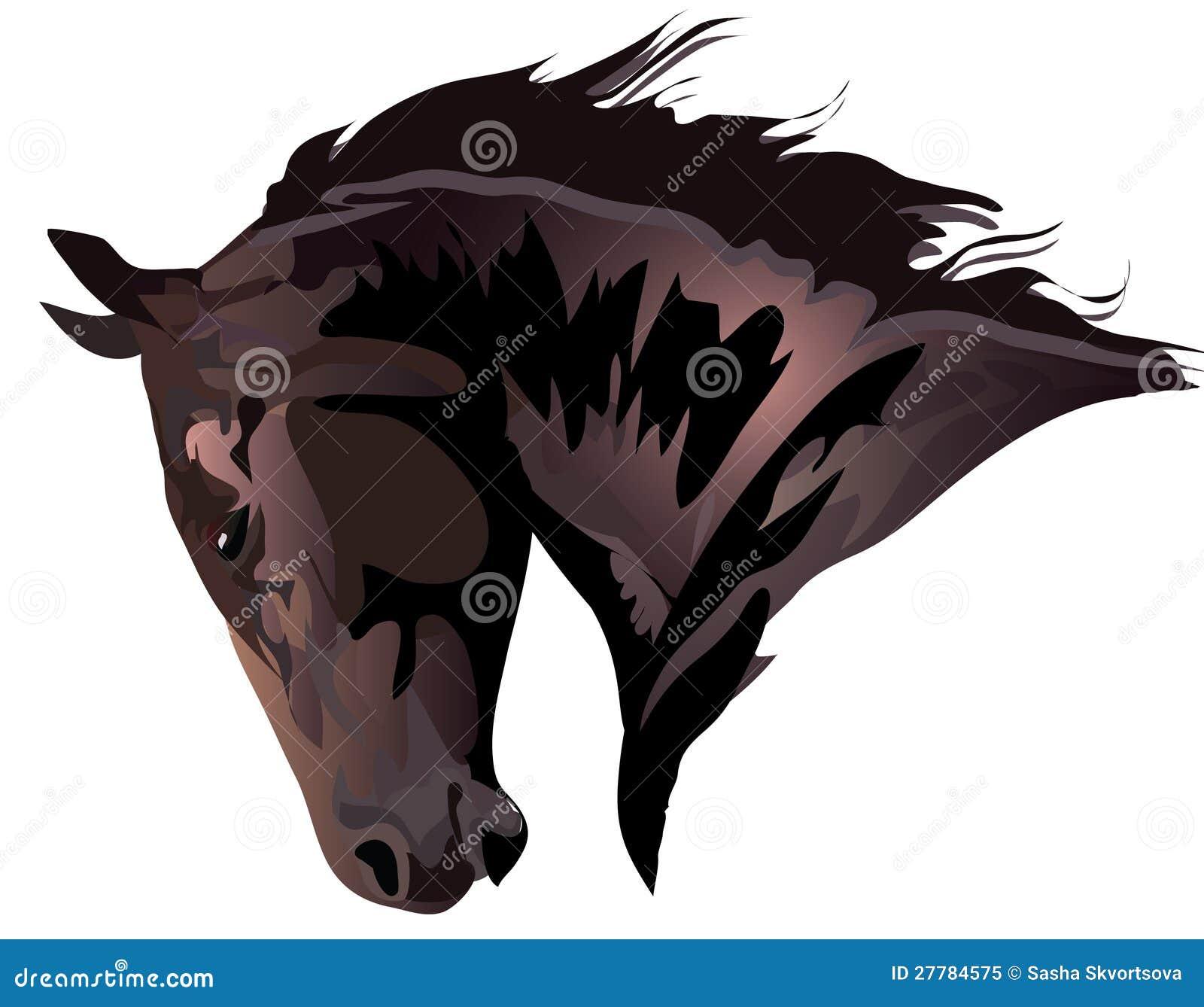 Επικεφαλής του αλόγου κόλπων