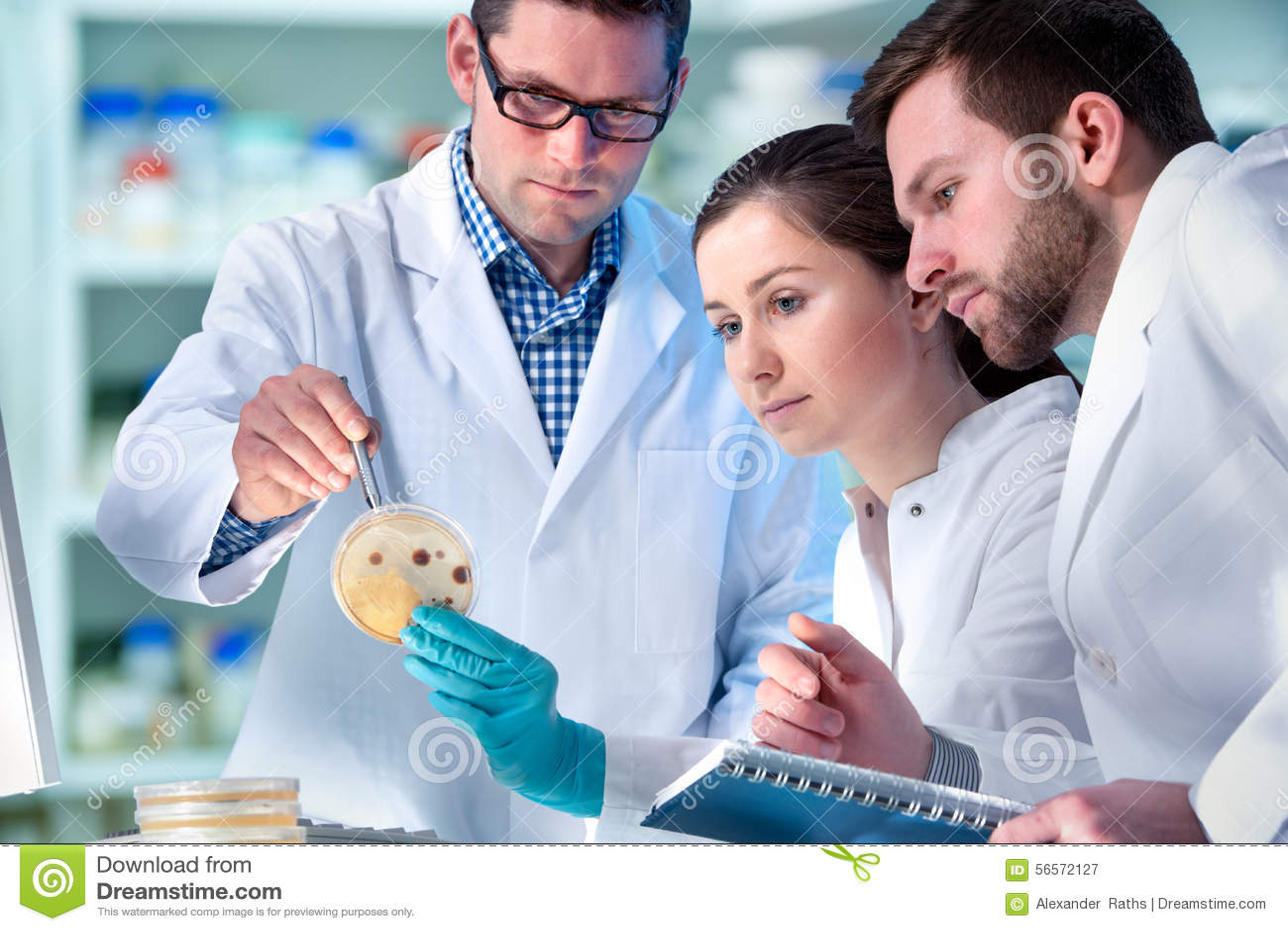 Download Επιστήμονες που εργάζονται στο εργαστήριο Στοκ Εικόνα - εικόνα από εγγράφων, χημικός: 56572127