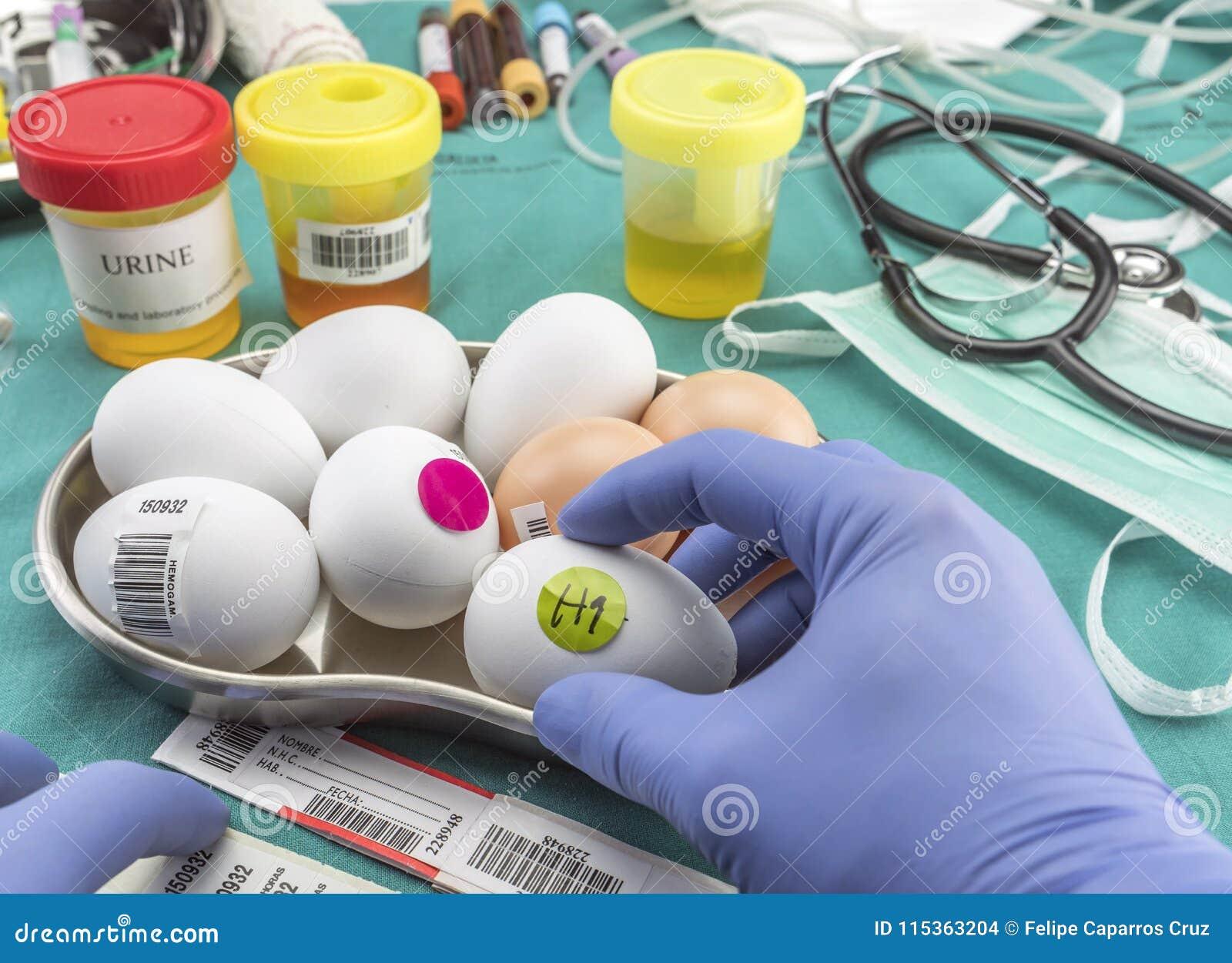 Επιστημονικό εμπορικό σήμα με τα αυγά ετικετών για να εξετάσει σε κακή κατάσταση μέσα