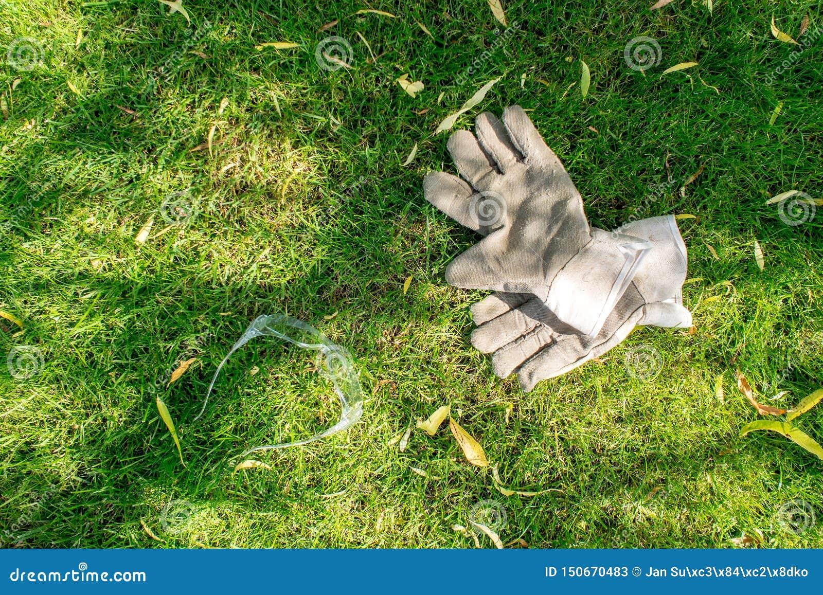 Εργαζόμενος στον κήπο, τα προστατευτικά γάντια και τα glases που βάζουν στην πράσινη χλόη