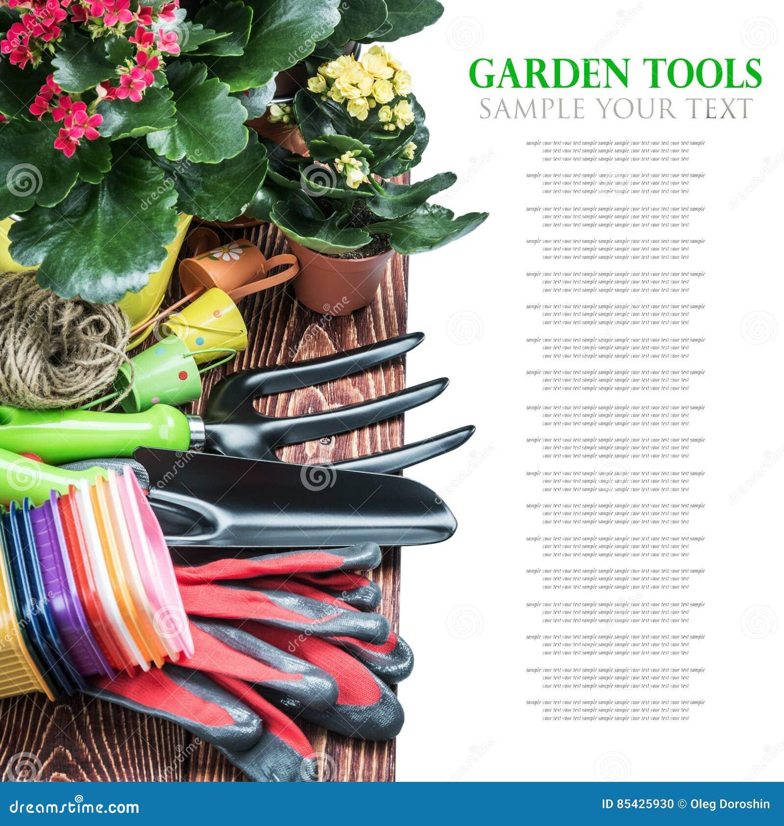 Εργαλεία και λουλούδια κήπων στον πίνακα