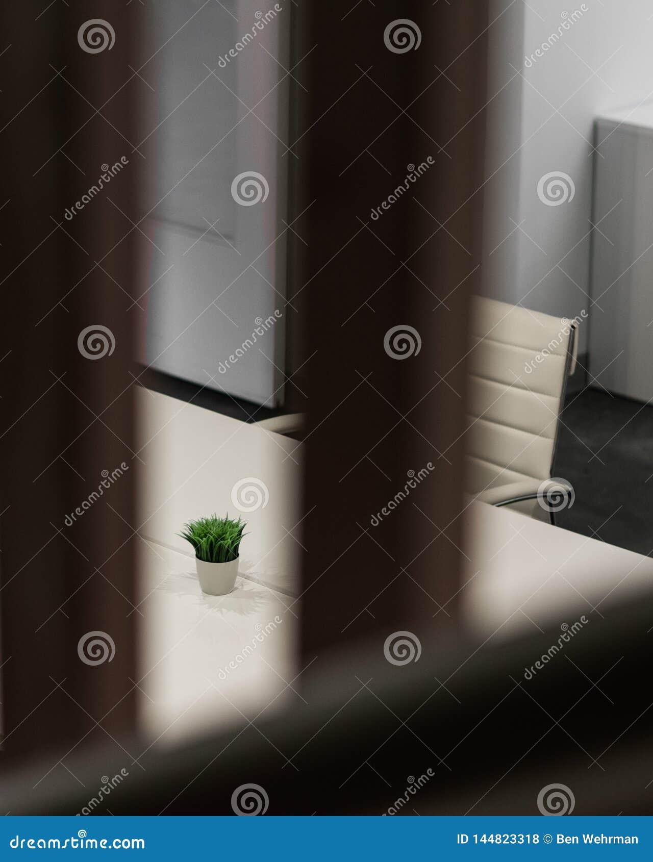 Εσωτερικό γραφείο σχεδίου με Houseplant