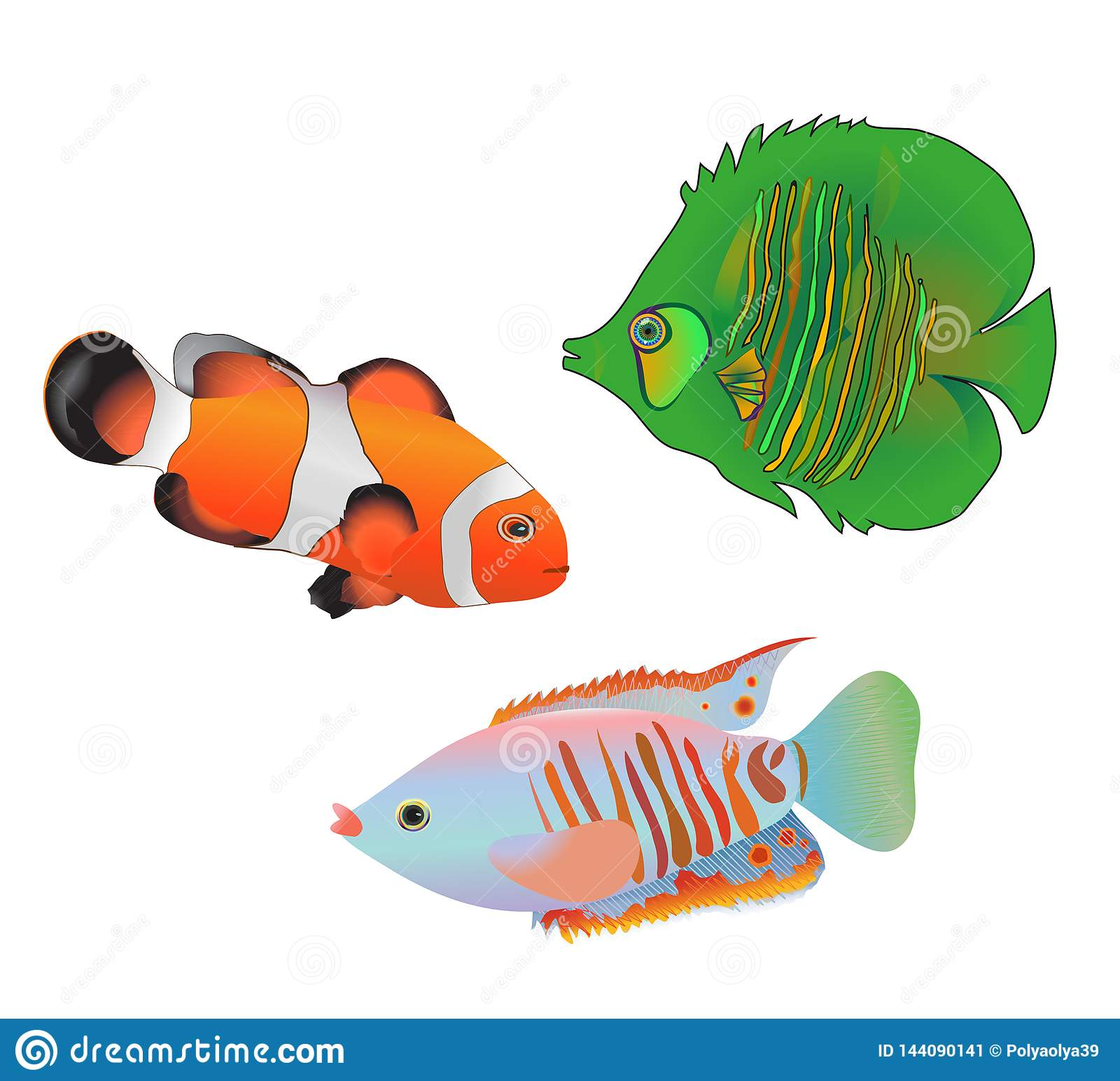 Ετερόκλητα τροπικά ψάρια θάλασσας καθορισμένα απομονωμένα στο άσπρο υπόβαθρο