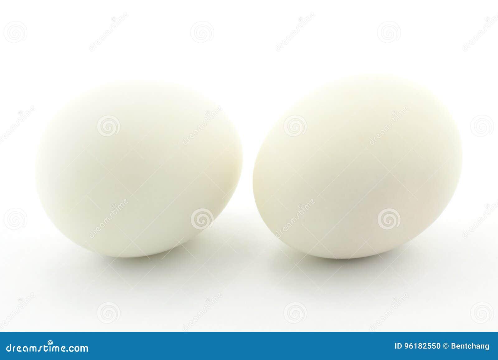λευκό αυγών