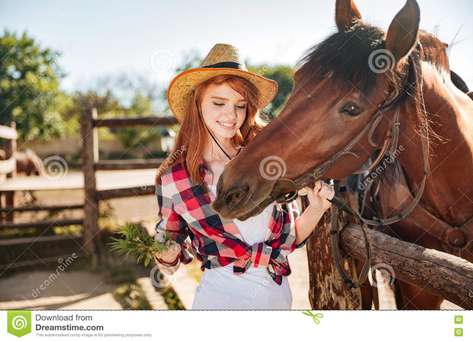 Εύθυμη γυναίκα cowgirl που δίνει τα τρόφιμα στο άλογο στο αγρόκτημα