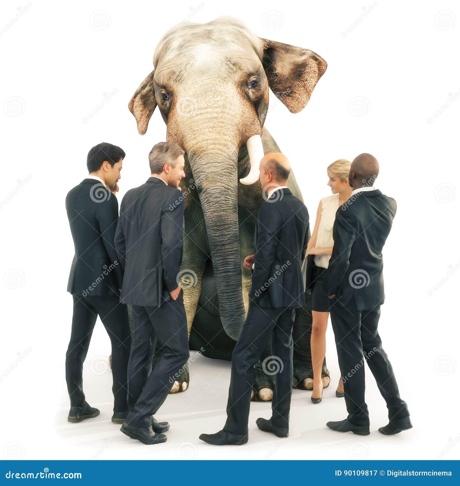 Ελέφαντας στο δωμάτιο από τη θέση,