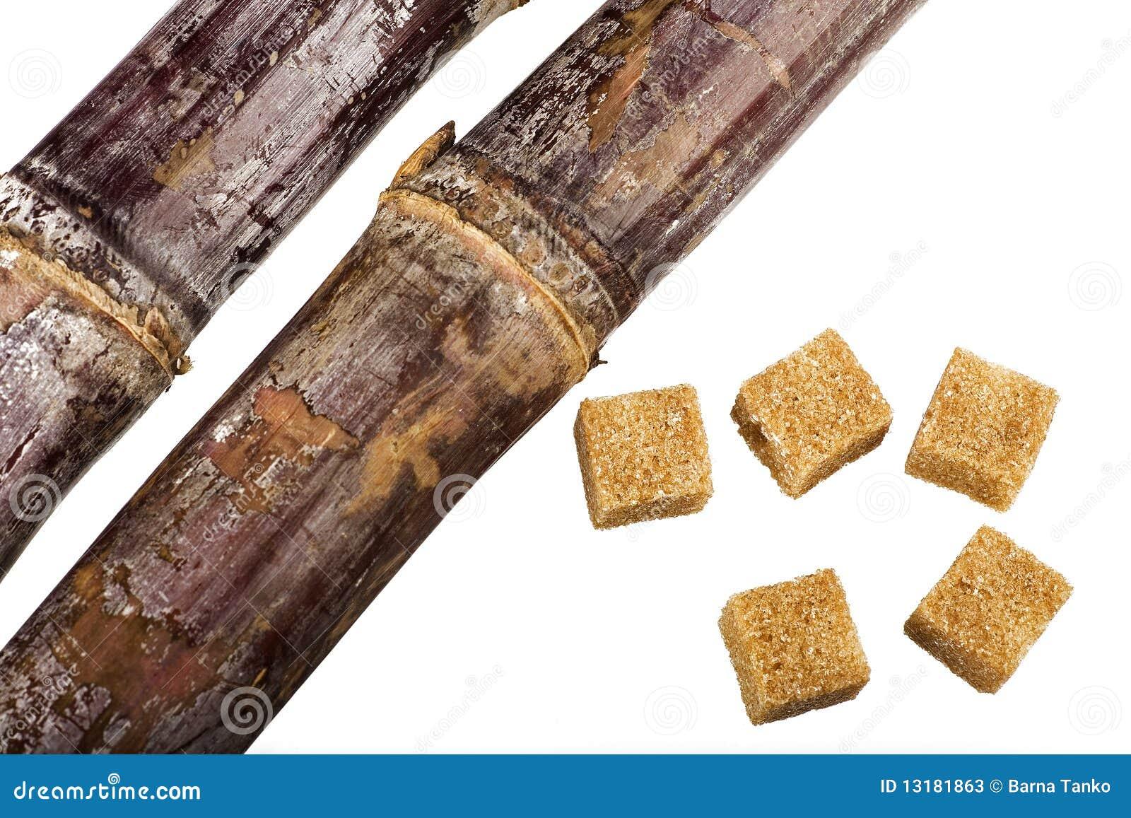 ζάχαρη κύβων καλάμων