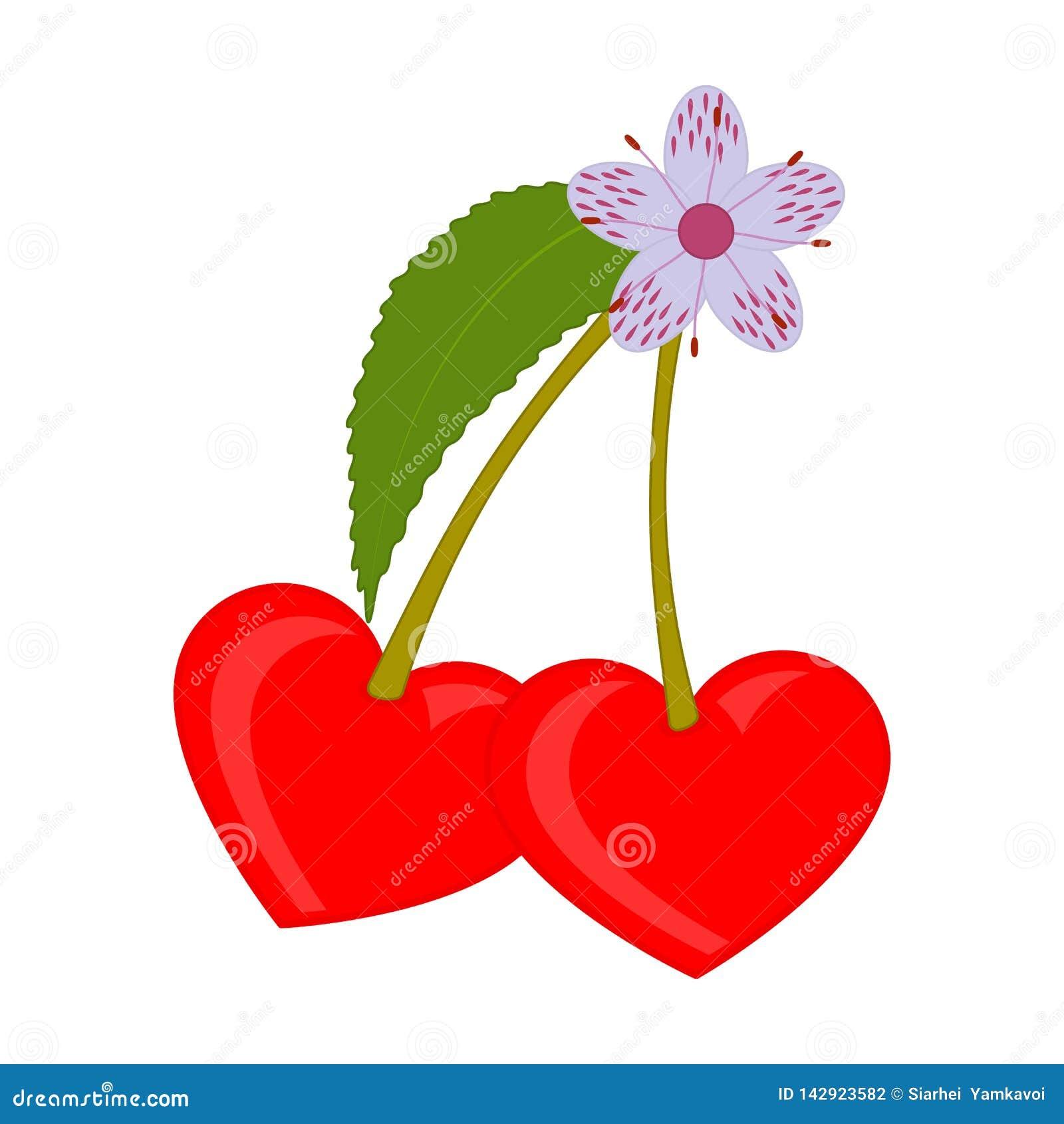 Ζευγάρι των κόκκινων κερασιών με ένα λουλούδι και μια καρδιά φύλλων που διαμορφώνονται Εικονίδιο καρδιών Απομονωμένη διανυσματική