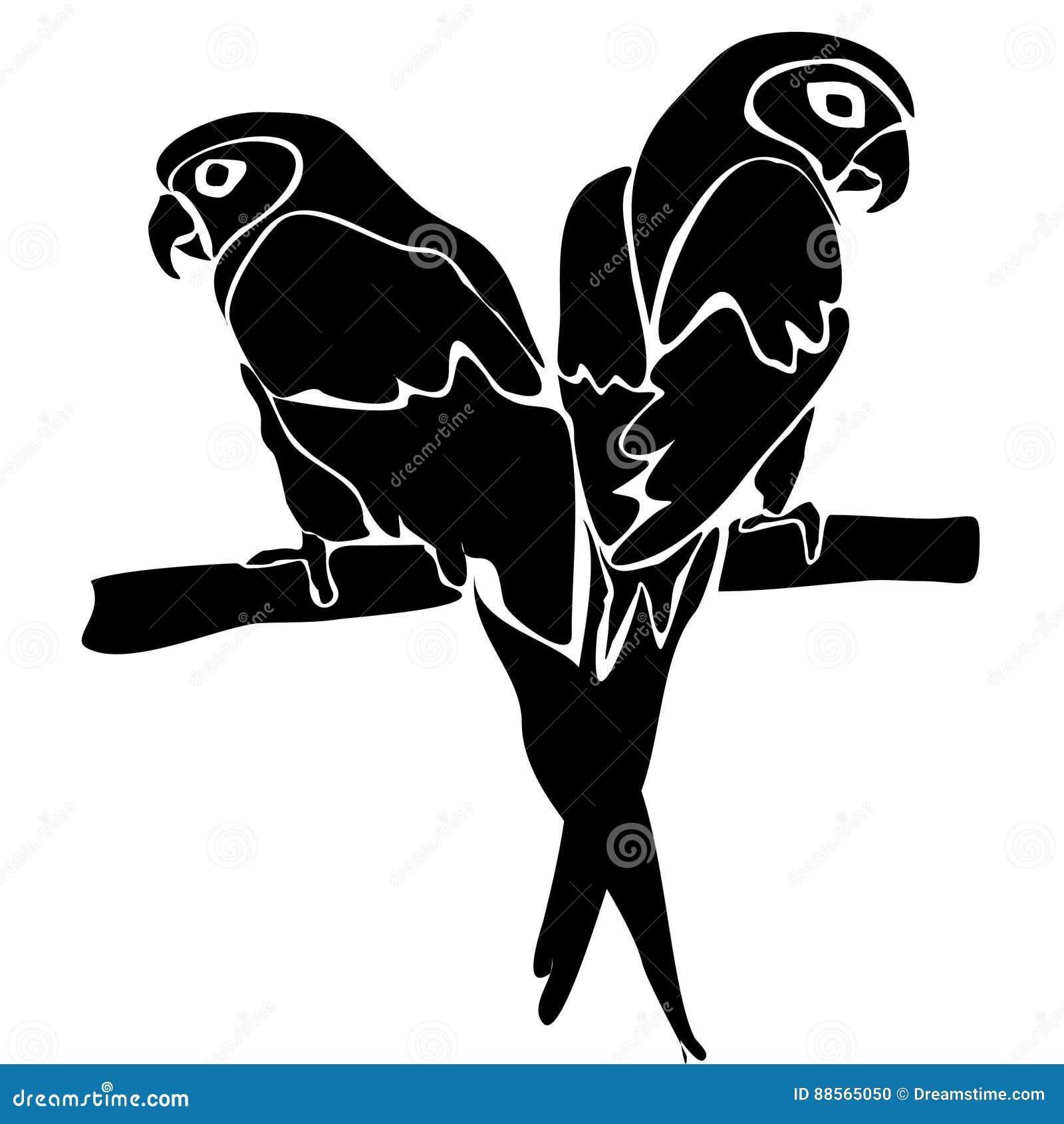 Λευκό πουλί εραστές