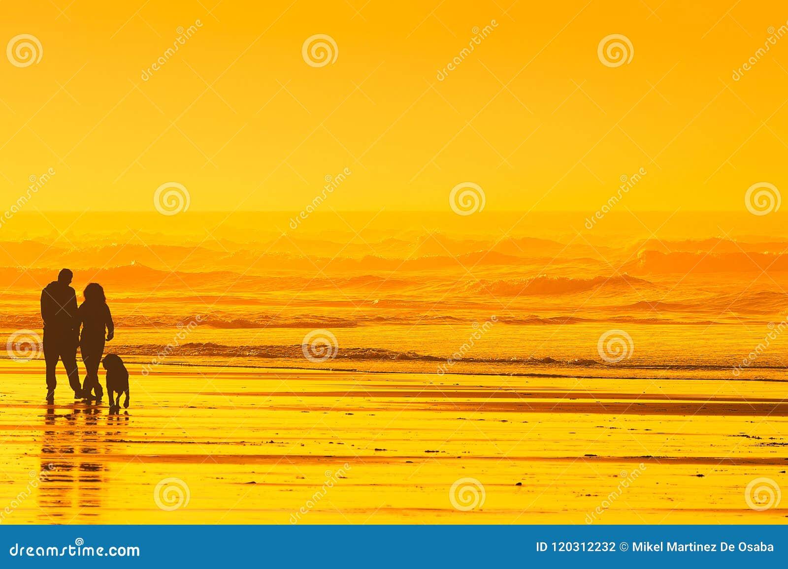 Ζεύγος που περπατά το σκυλί στην παραλία