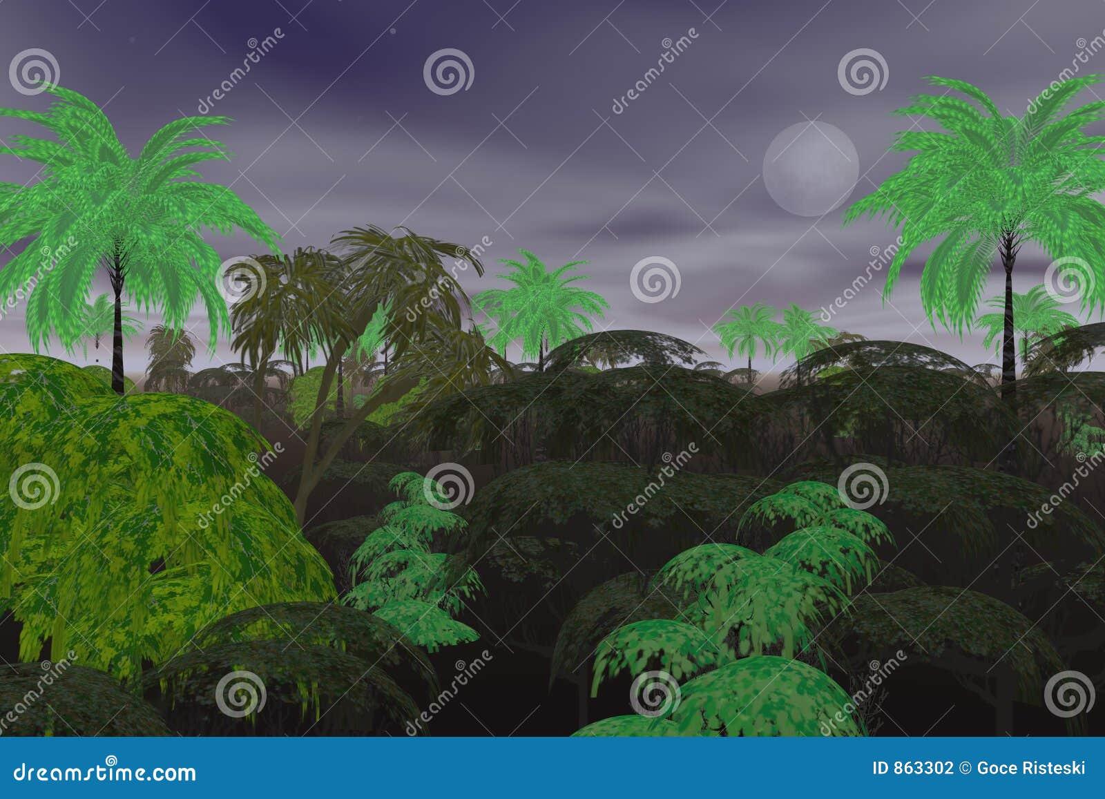 ζούγκλα