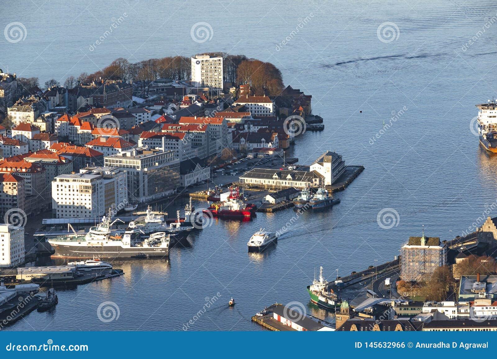 Ζωή φιορδ στο Μπέργκεν, Νορβηγία