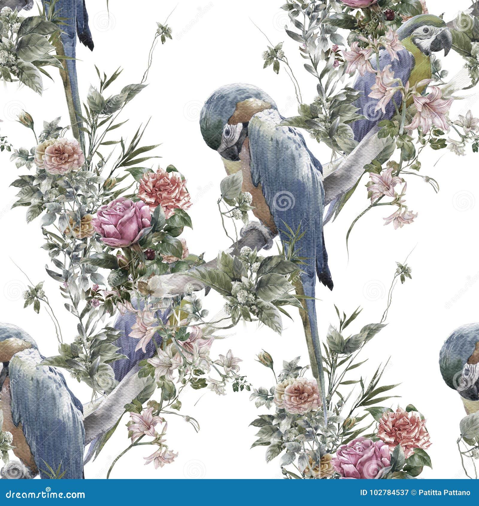 Ζωγραφική Watercolor με τα πουλιά και τα λουλούδια, άνευ ραφής σχέδιο στο άσπρο υπόβαθρο