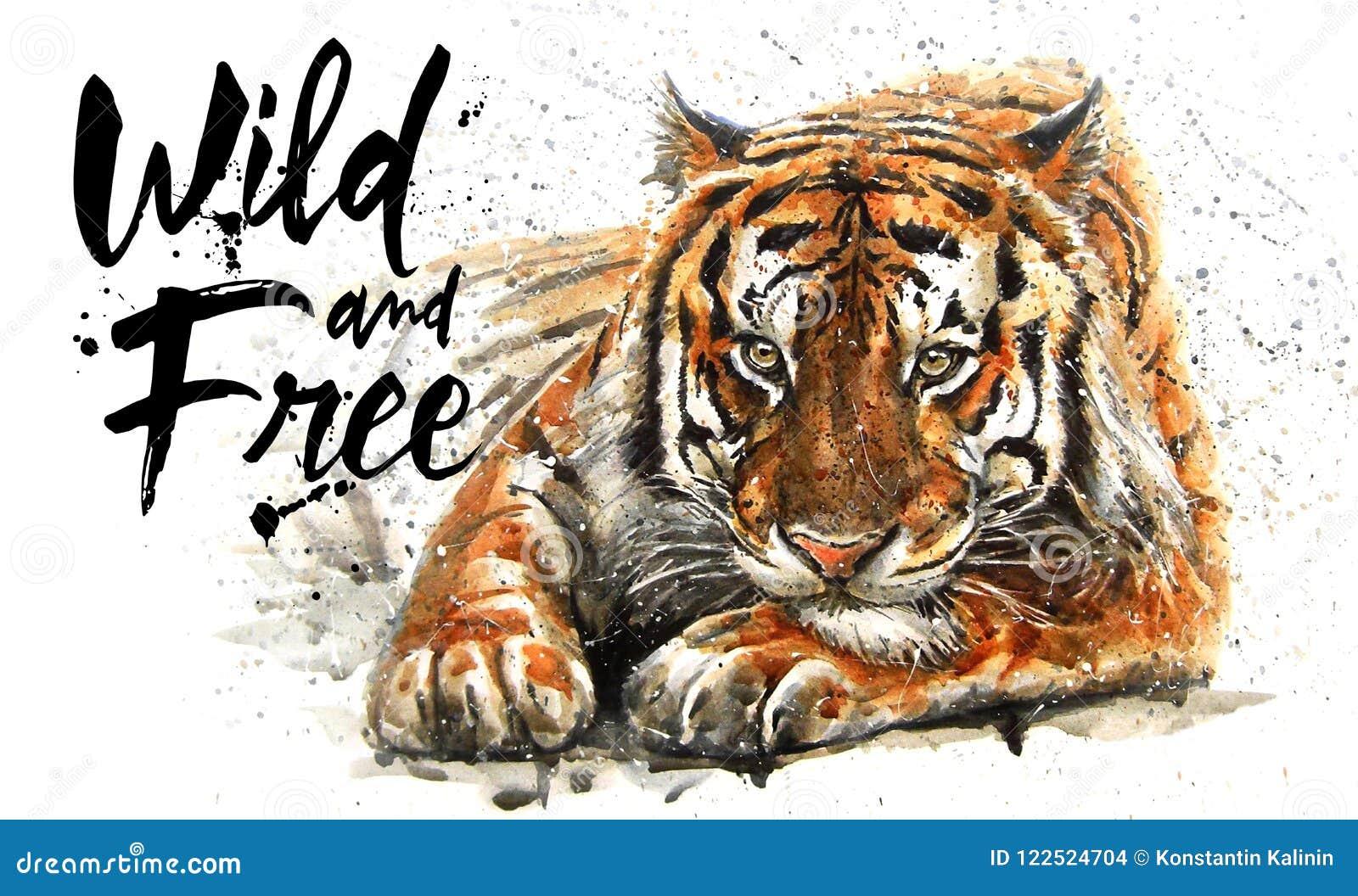 Ζωγραφική watercolor τιγρών, αρπακτικό ζώο ζώων, σχέδιο της μπλούζας, άγριος και ελεύθερος, τυπωμένη ύλη, κυνηγός, βασιλιάς της ζ