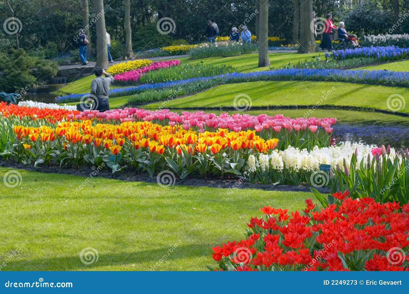 ζωηρόχρωμος κήπος λουλουδιών
