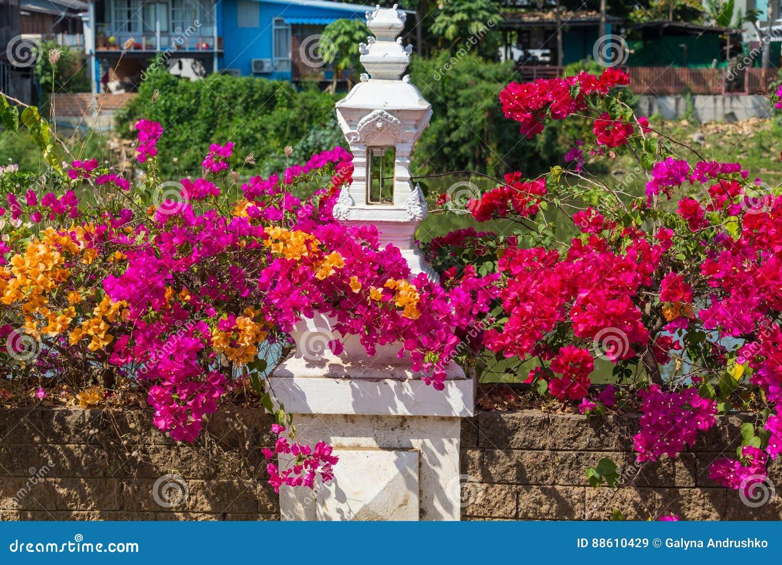 ζωηρόχρωμος κήπος