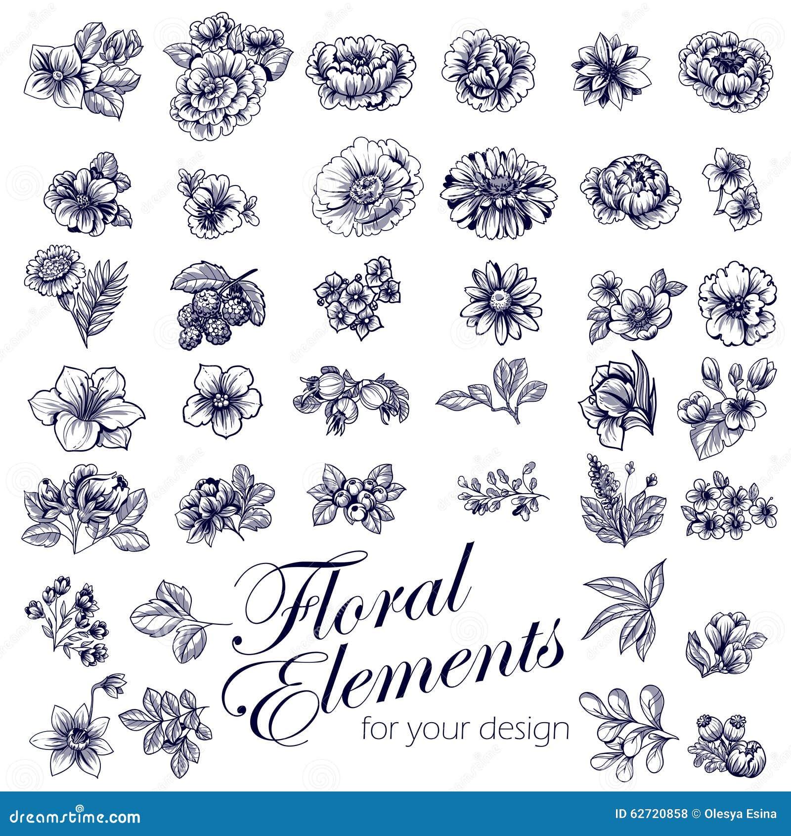 ζωηρόχρωμο σύνολο λουλουδιών στοιχείων σχεδίου