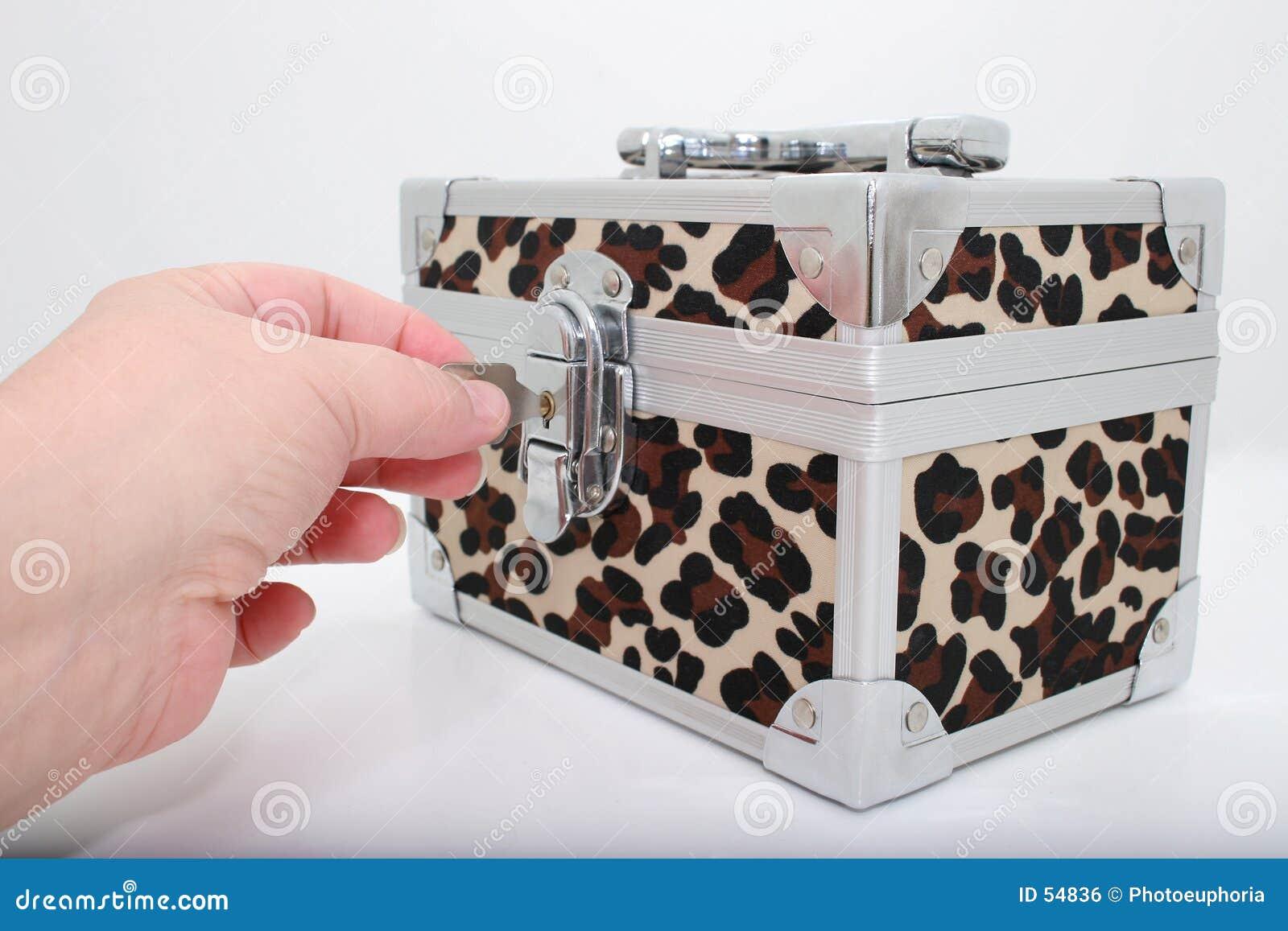 ζωική τυπωμένη ύλη κλειδωμάτων κιβωτίων