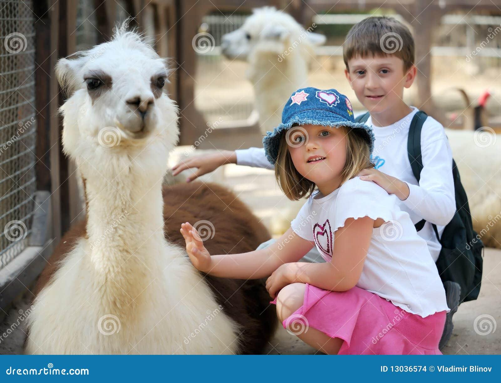 ζωολογικός κήπος παιδιώ