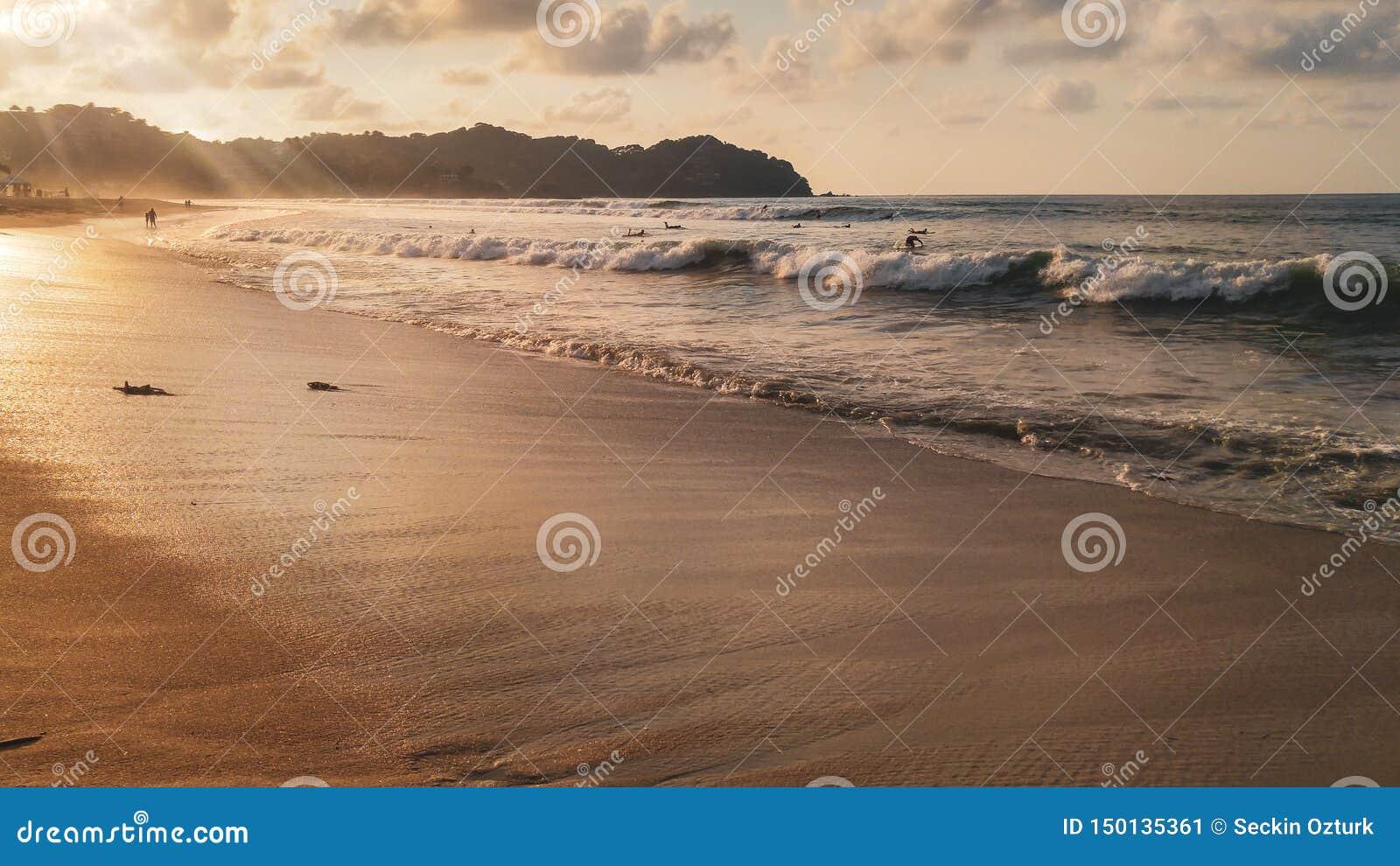 Ηλιοβασίλεμα με τους φοίνικες στην παραλία Sayulita