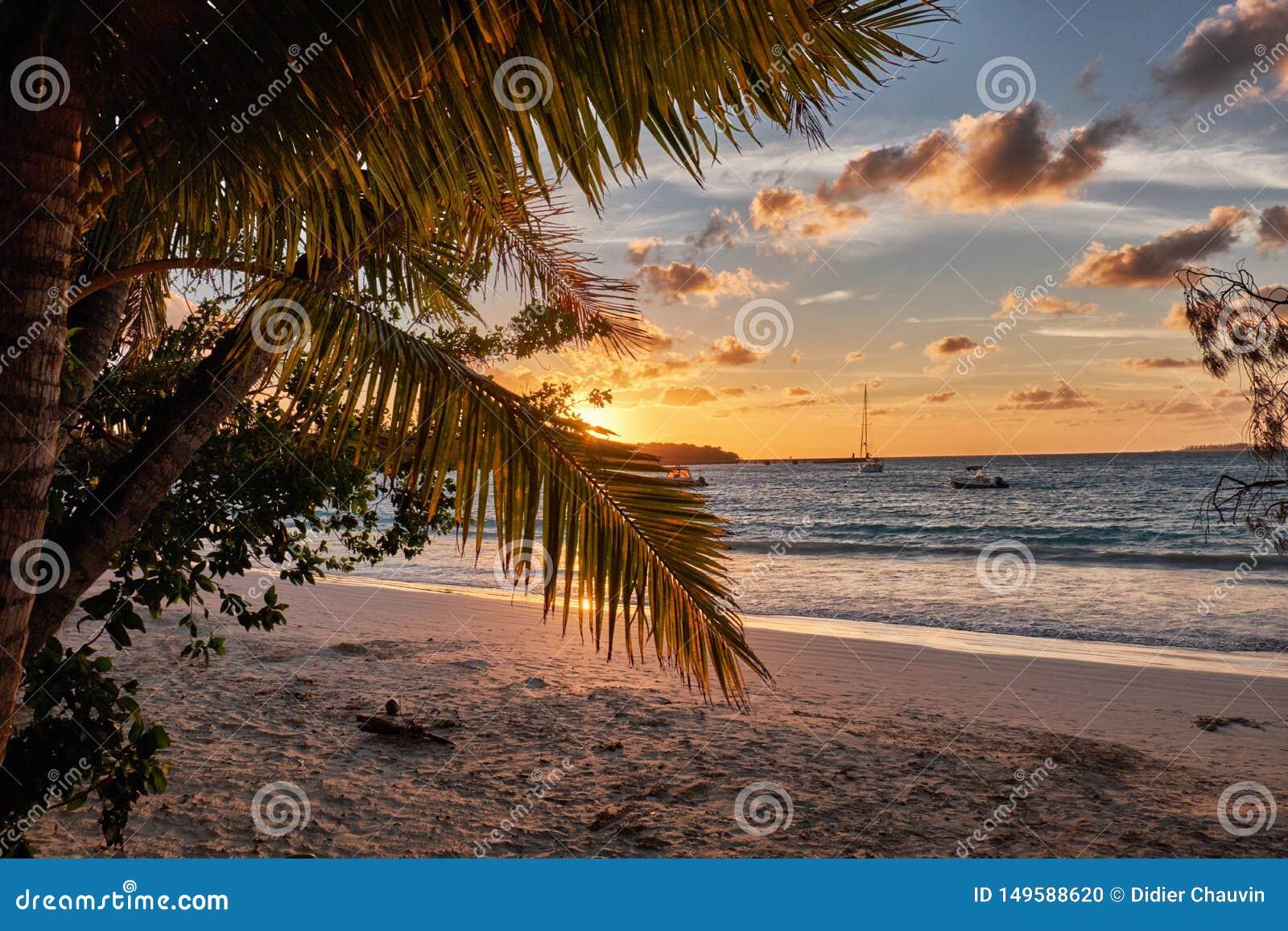 Ηλιοβασίλεμα πέρα από το νησί των πεύκων στη Νέα Καληδονία
