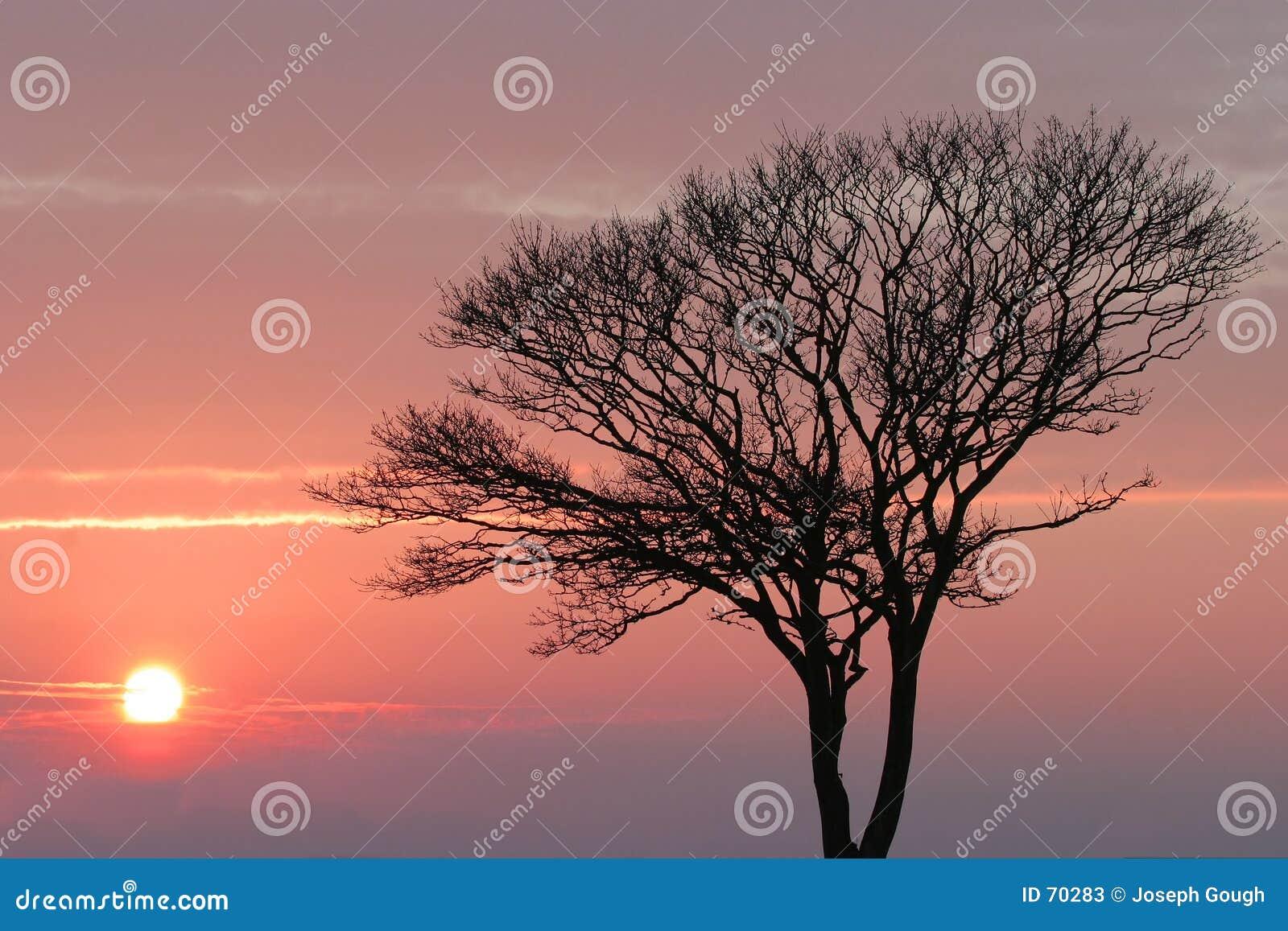 ηλιοβασίλεμα χειμερινό