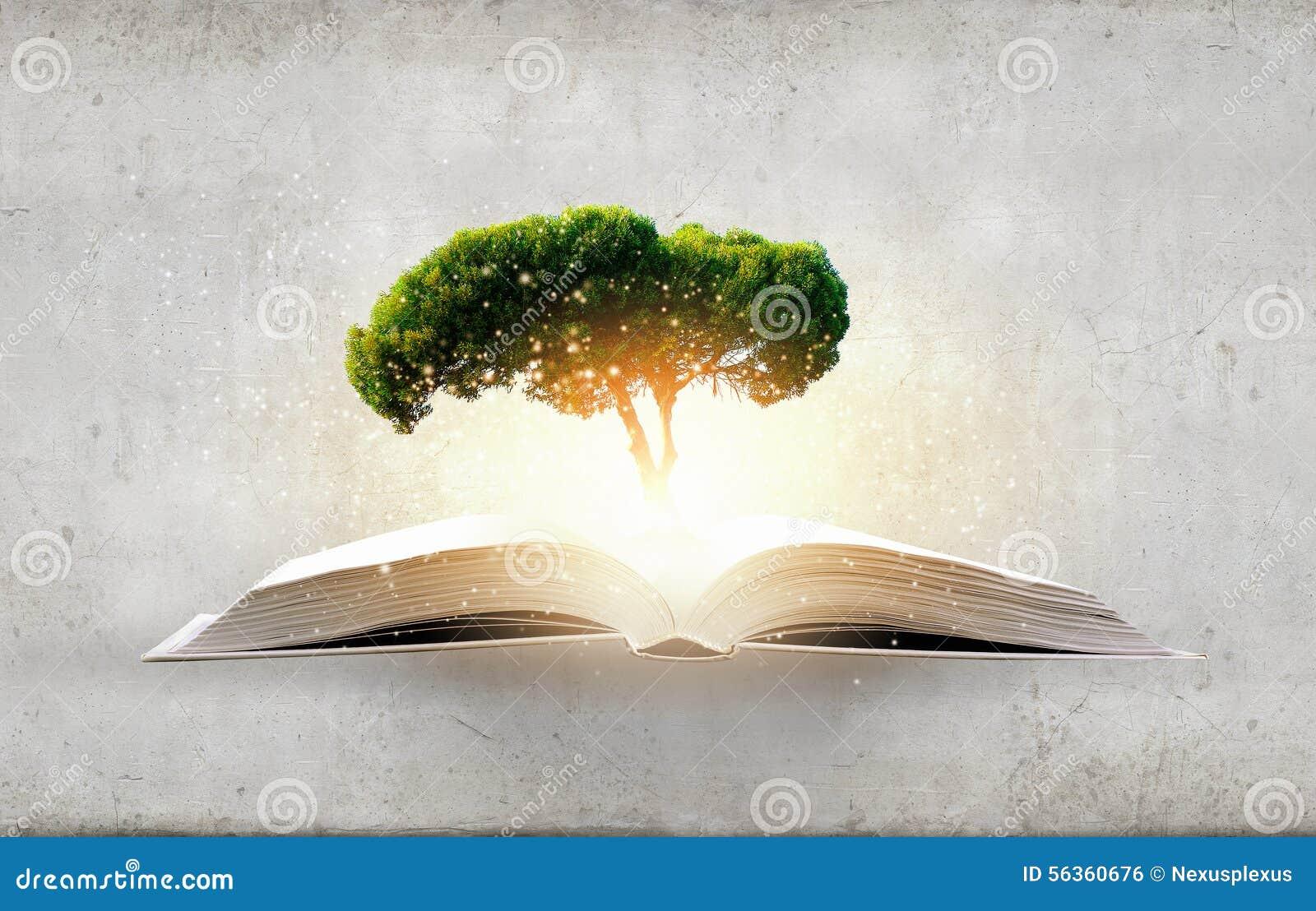 Η ανάγνωση αναπτύσσει τη φαντασία