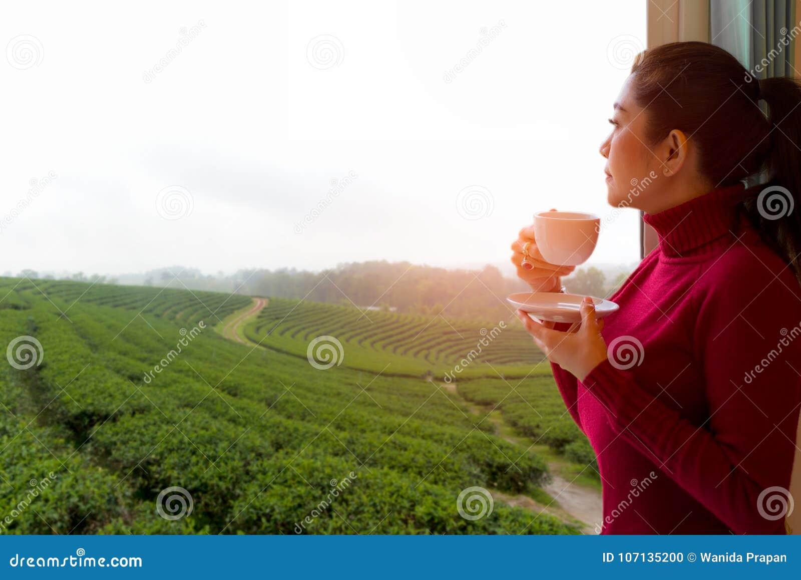 Η ασιατική γυναίκα έβαλε το κόκκινο φρέσκο πρωί πουλόβερ πίνοντας το καυτό τσάι και έξω το παράθυρο για δείτε το αγρόκτημα τσαγιο