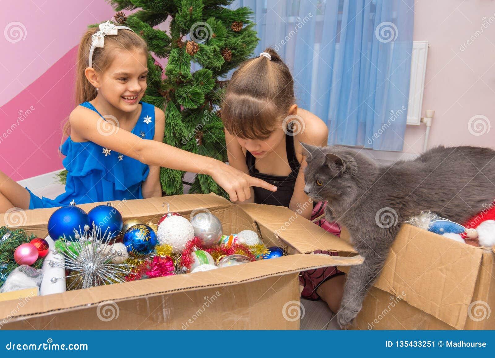 Η γάτα σπιτιών ήρθε να εξετάσει τις διακοσμήσεις χριστουγεννιάτικων δέντρων στο κιβώτιο, το κορίτσι παρουσιάζει ένα δάχτυλο στη γ
