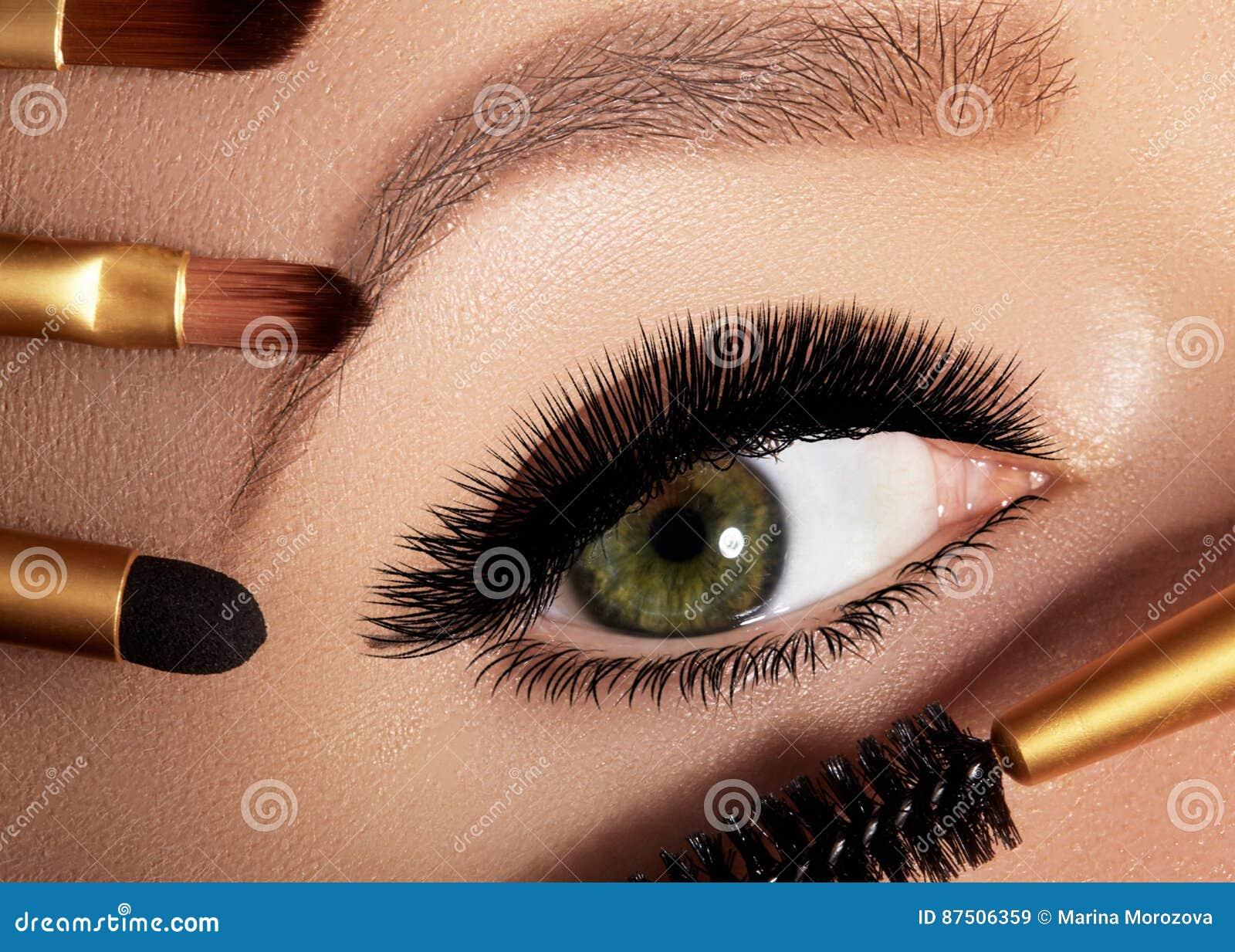 Η γυναίκα μόδας που εφαρμόζει τη σκιά ματιών, mascara στο βλέφαρο, eyelash και το φρύδι που χρησιμοποιεί makeup βουρτσίζει Επαγγε