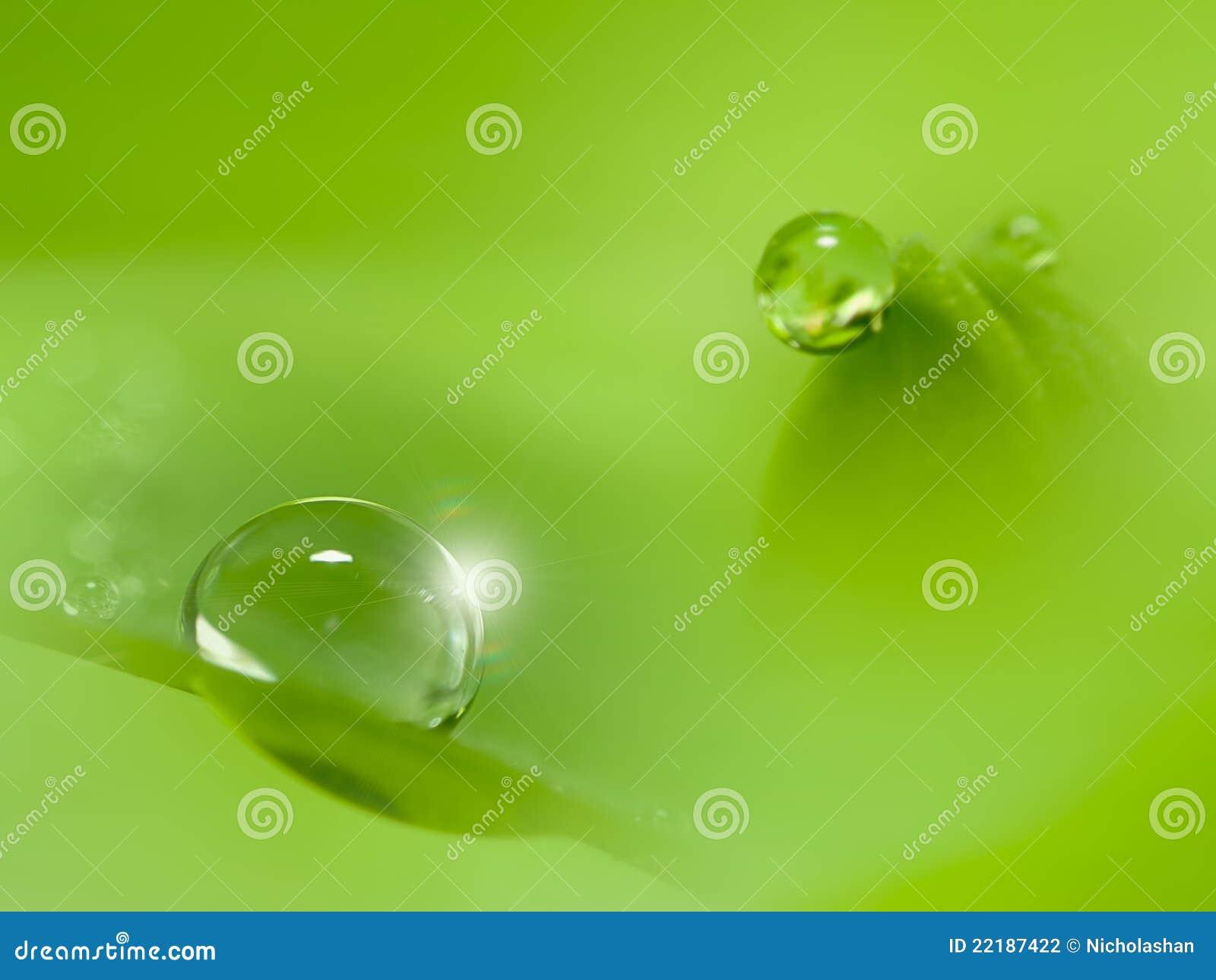 η δροσιά 2mm ρίχνει το πράσινο ύ