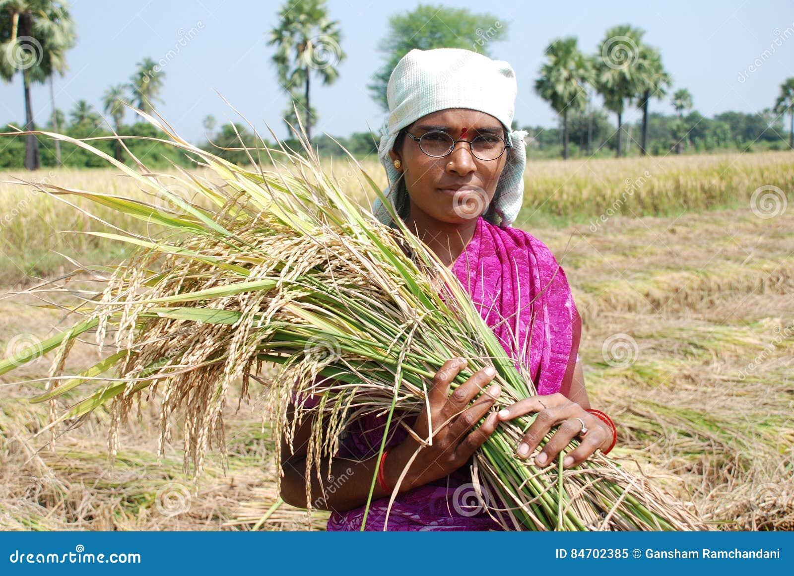 Η θηλυκή Farmer
