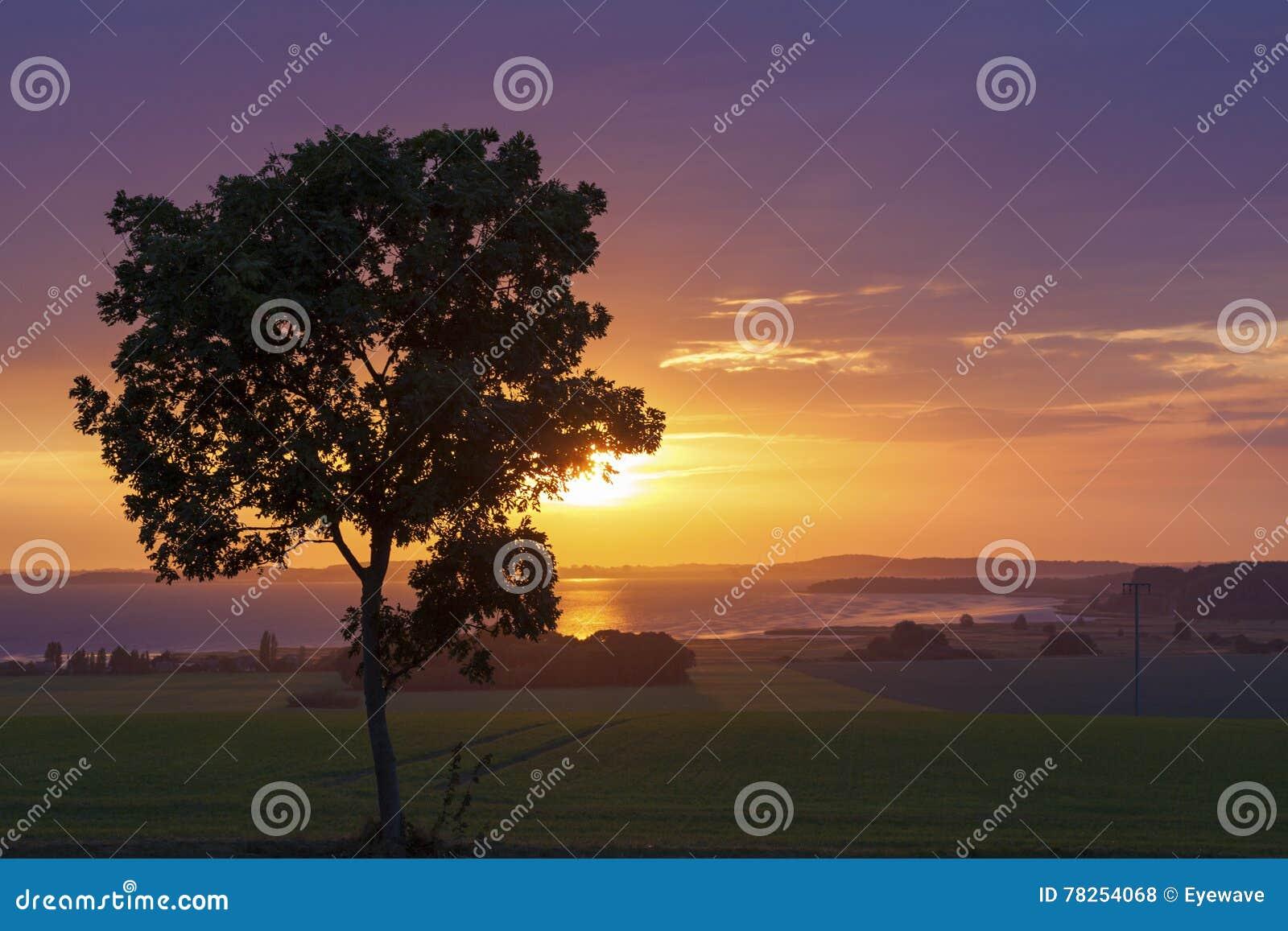 Ηλιοβασίλεμα στη λιμνοθάλασσα Bodden jasmunder, νησί Rugia