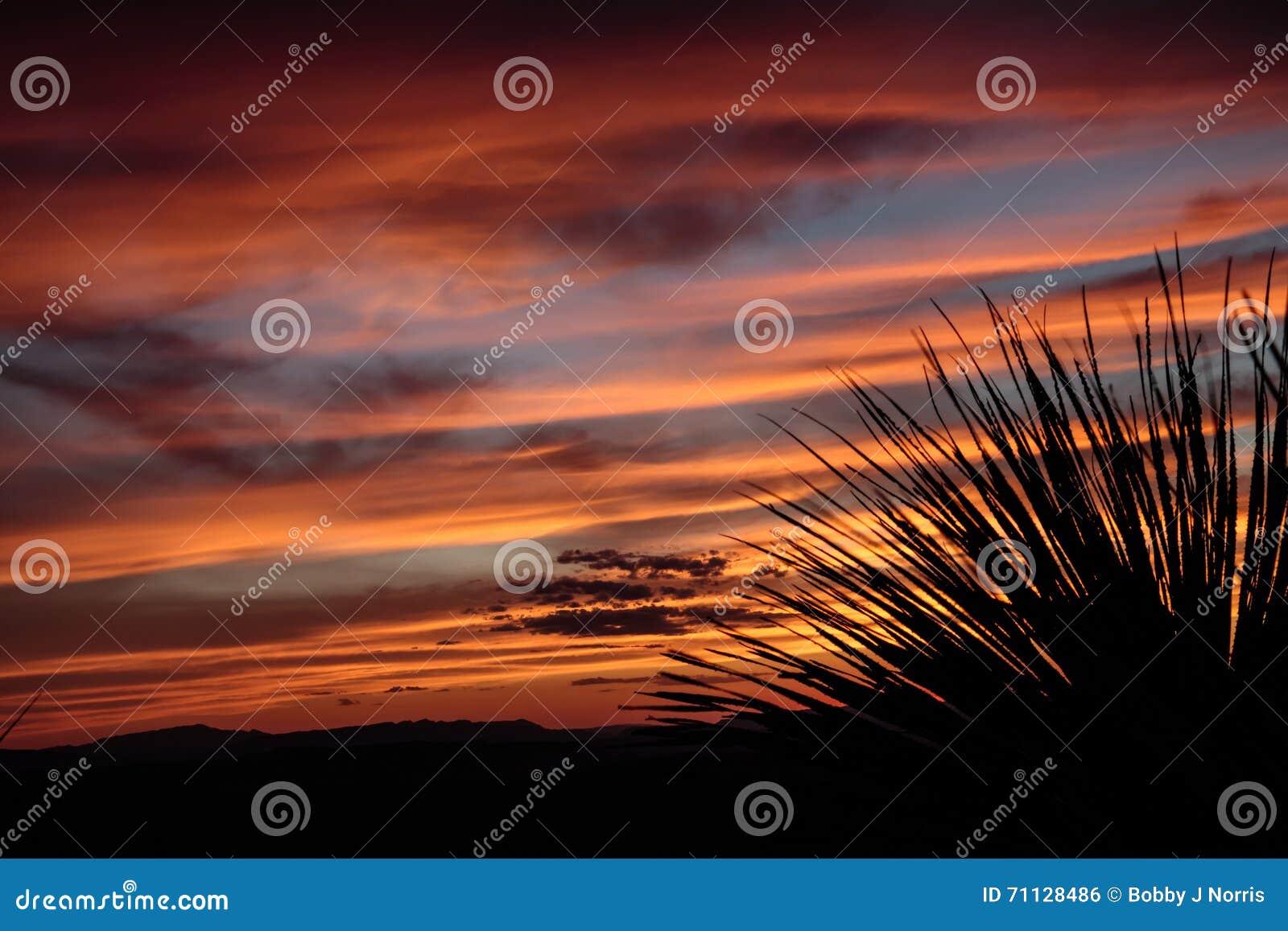 Ηλιοβασίλεμα Vista Sotol