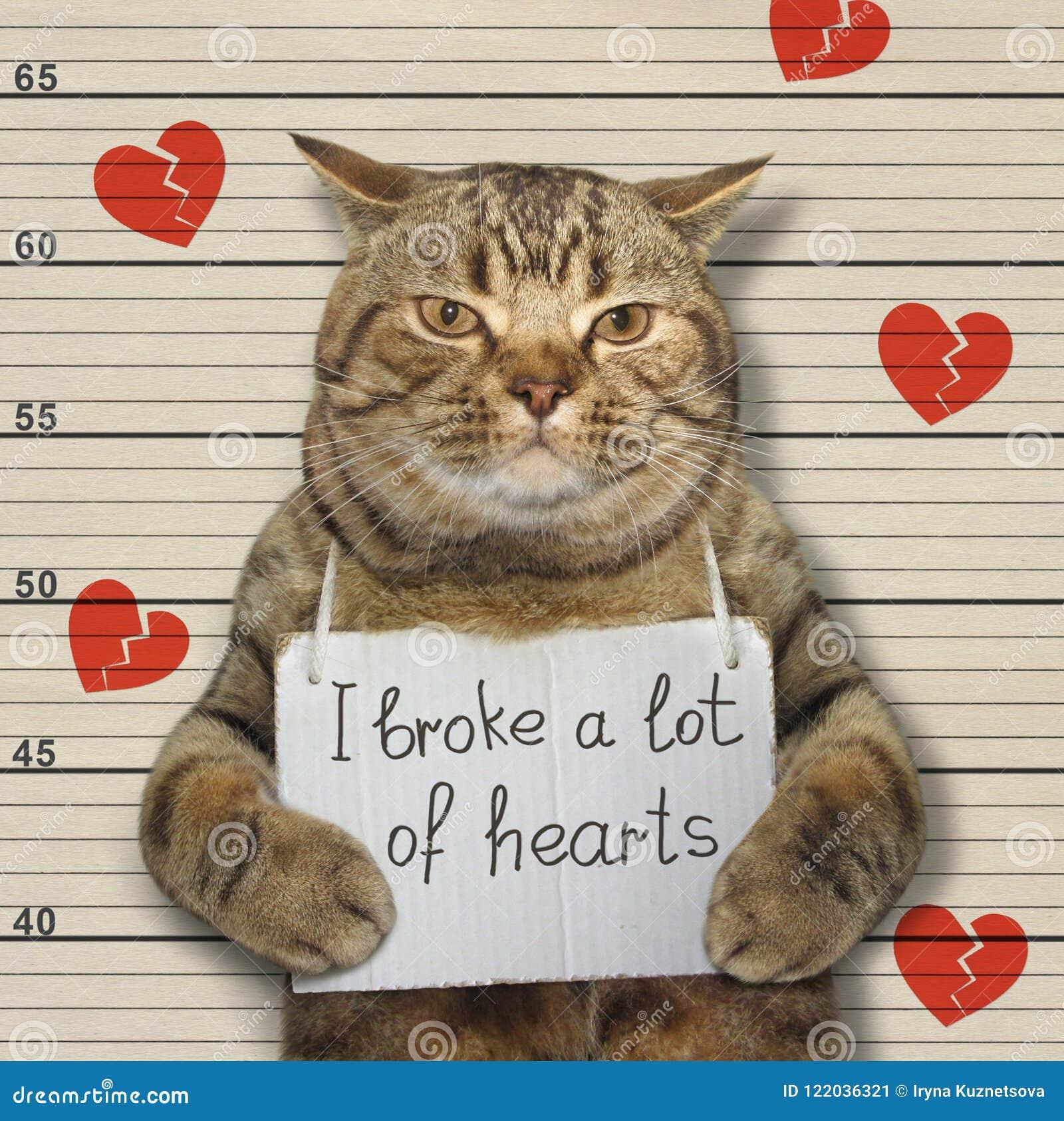 Η κακή γάτα έσπασε τις καρδιές