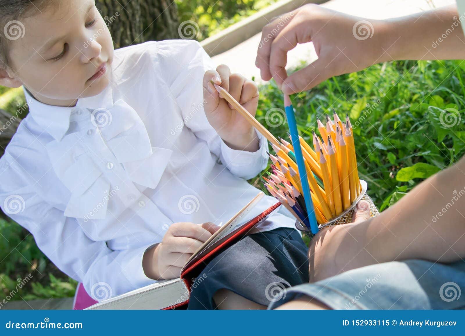 Η κινηματογράφηση σε πρώτο πλάνο, στο πάρκο, στο καθαρό αέρα, από έναν μεγάλο αριθμό μολυβιών, οι σπουδαστές επιλέγει ακονισμένο