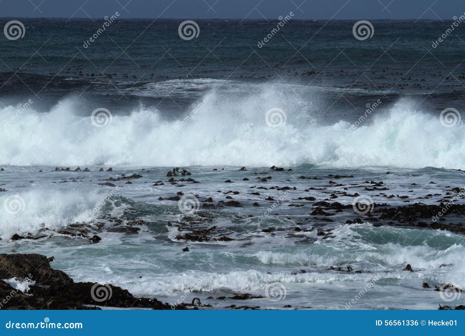 Download Η κυματωγή στη νοτιοαφρικανική ακτή Στοκ Εικόνες - εικόνα από αφρικανικά, ακρωτήριο: 56561336