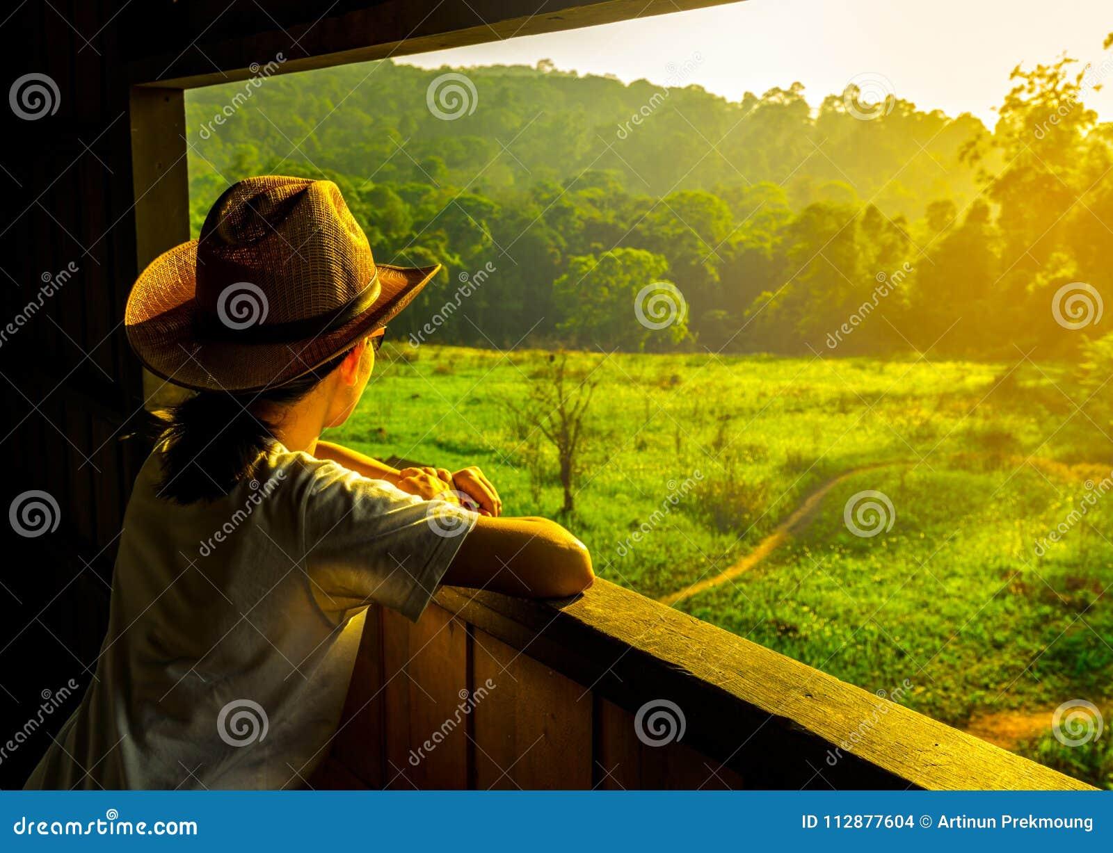 Η νέα ασιατική γυναίκα φορά το καπέλο κάθεται και την όμορφη άποψη προσοχής του πράσινων τομέα και του δάσους χλόης στον πύργο πα