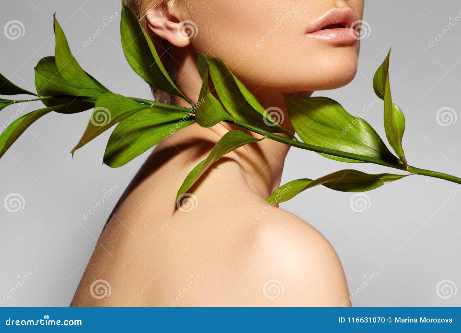 Η όμορφη γυναίκα εφαρμόζει το οργανικό καλλυντικό wellness SPA Μοντέλο με το καθαρό δέρμα Υγειονομική περίθαλψη Εικόνα με το φύλλ
