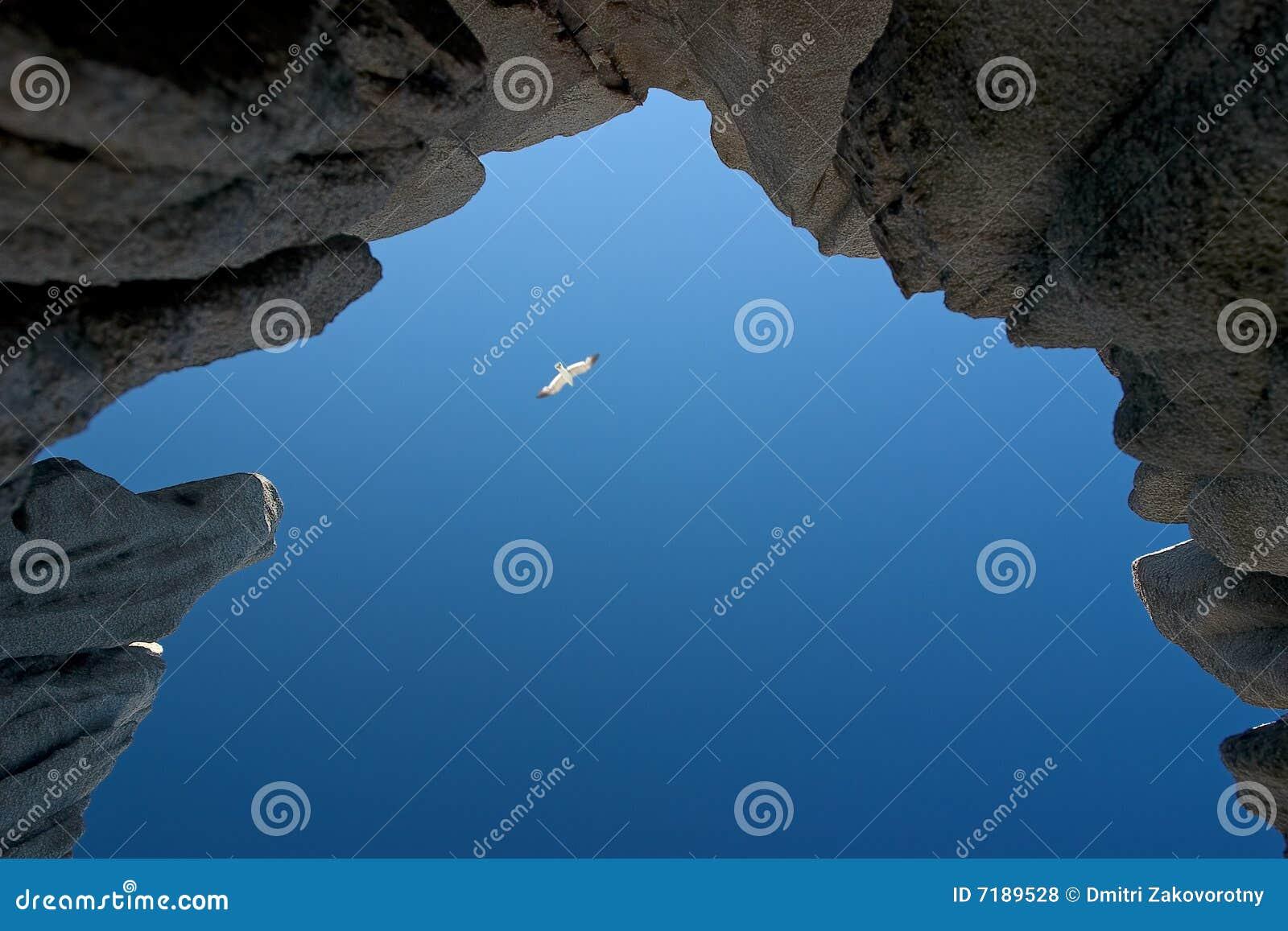 Θάλασσα της Ιαπωνίας. Φθινόπωρο. 8