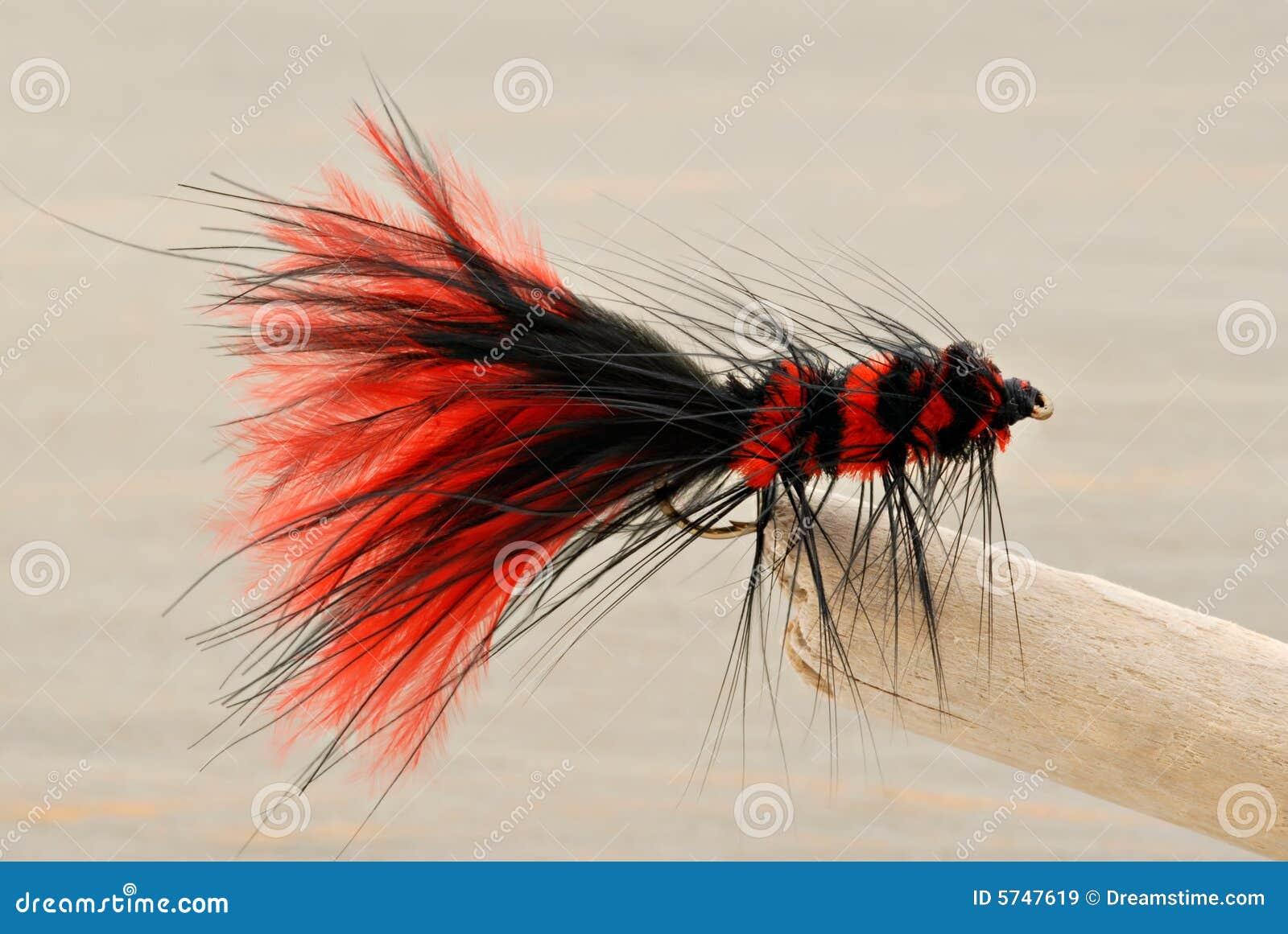 θέλγητρο μυγών αλιείας