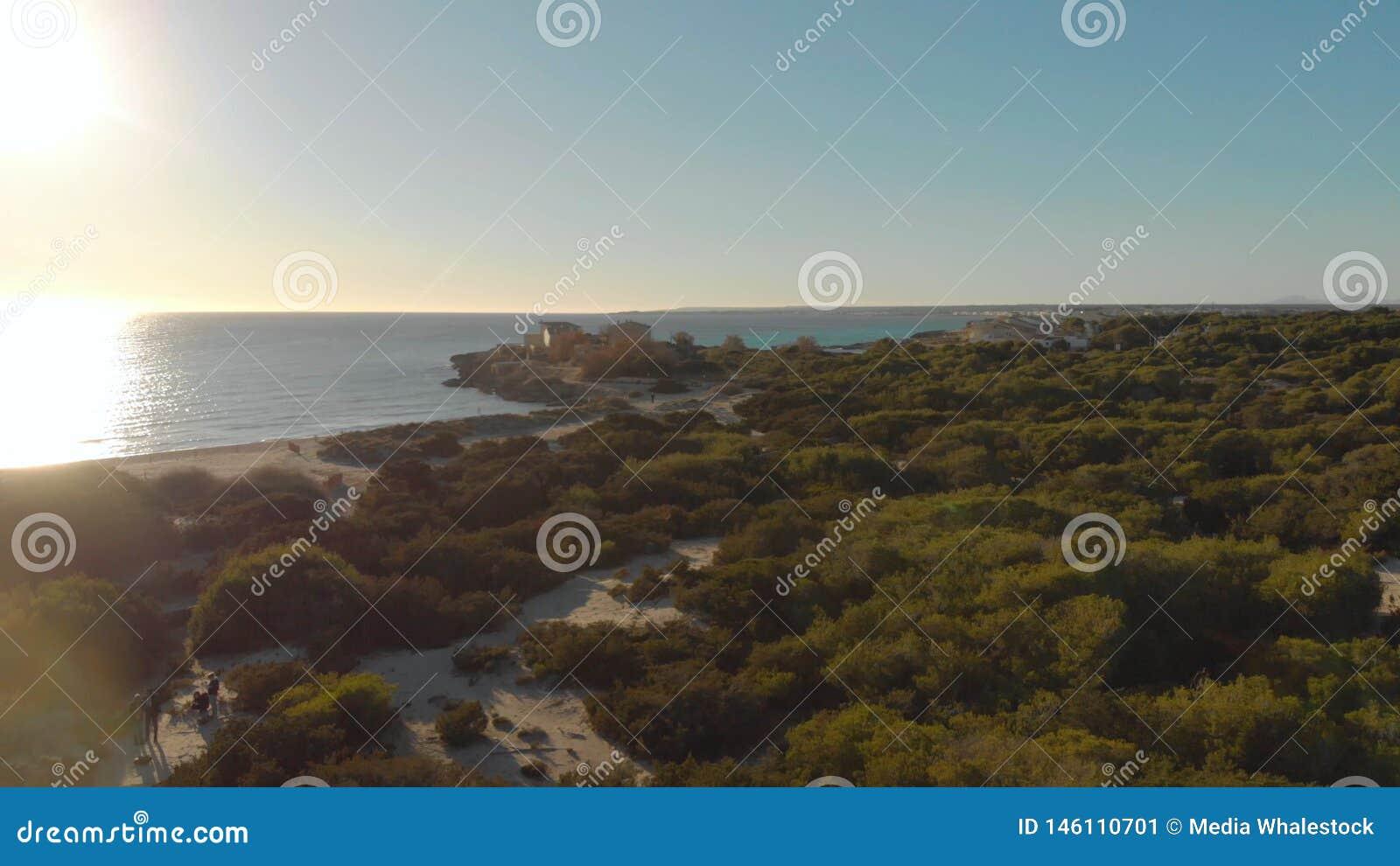 Θαμνώδης παραλία στο υπόβαθρο της θάλασσας και του μπλε ουρανού Τέχνη Τοπ άποψη της όμορφης παραλίας με τους πράσινους Μπους και