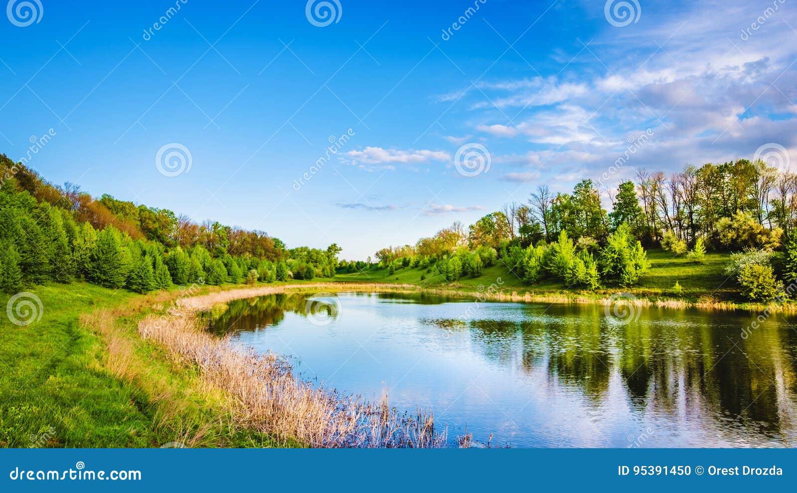 Θερινή λίμνη κοντά στο δάσος