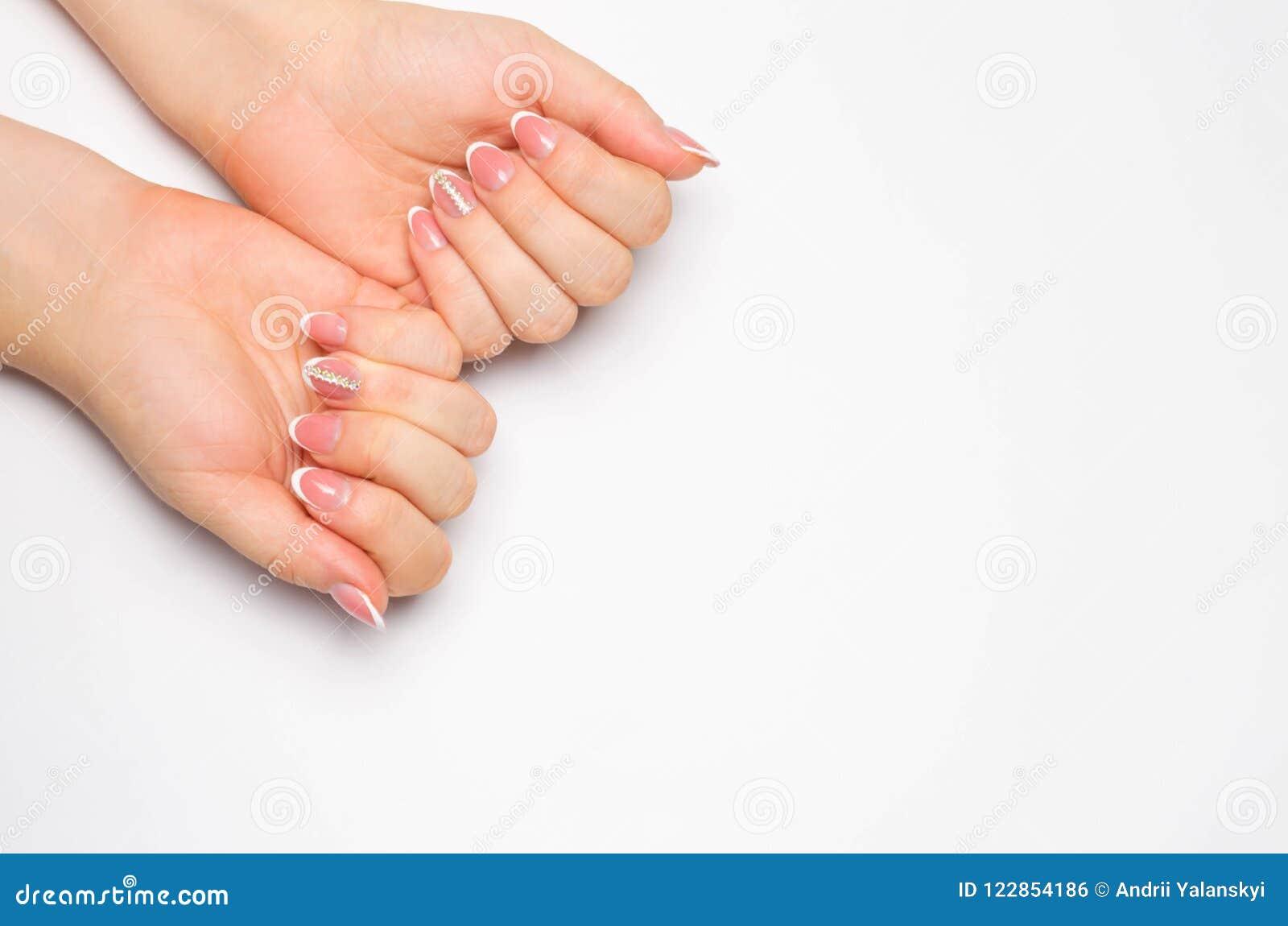 Θηλυκά μαλακά χέρια με το όμορφο γαλλικό μανικιούρ Απομονωμένη άσπρη ανασκόπηση Μακριά καρφιά τοποθετήστε το κείμενο διάστημα αντ