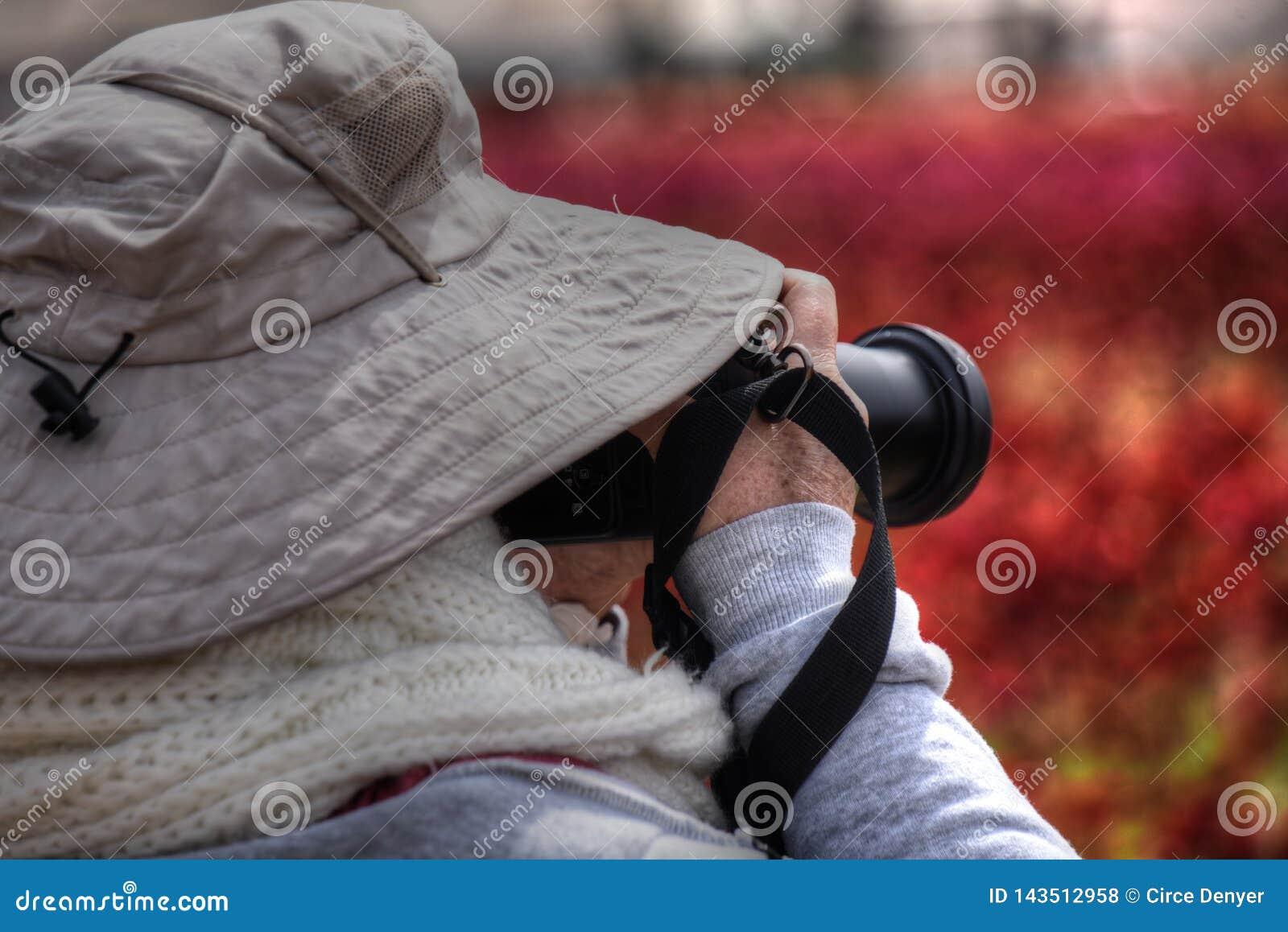 Θηλυκός φωτογράφος που φωτογραφίζει τα wildflowers κατά τη διάρκεια της Καλιφόρνιας Superbloom ανατολικού ανέμου