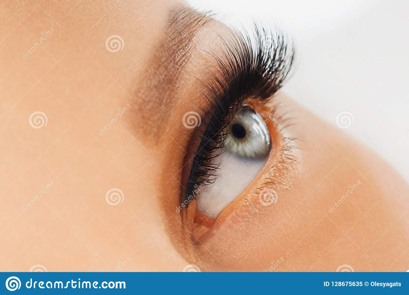 Θηλυκό μάτι με τα ακραία μακροχρόνια ψεύτικα eyelashes Επεκτάσεις Eyelash, σύνθεση, καλλυντικά, ομορφιά