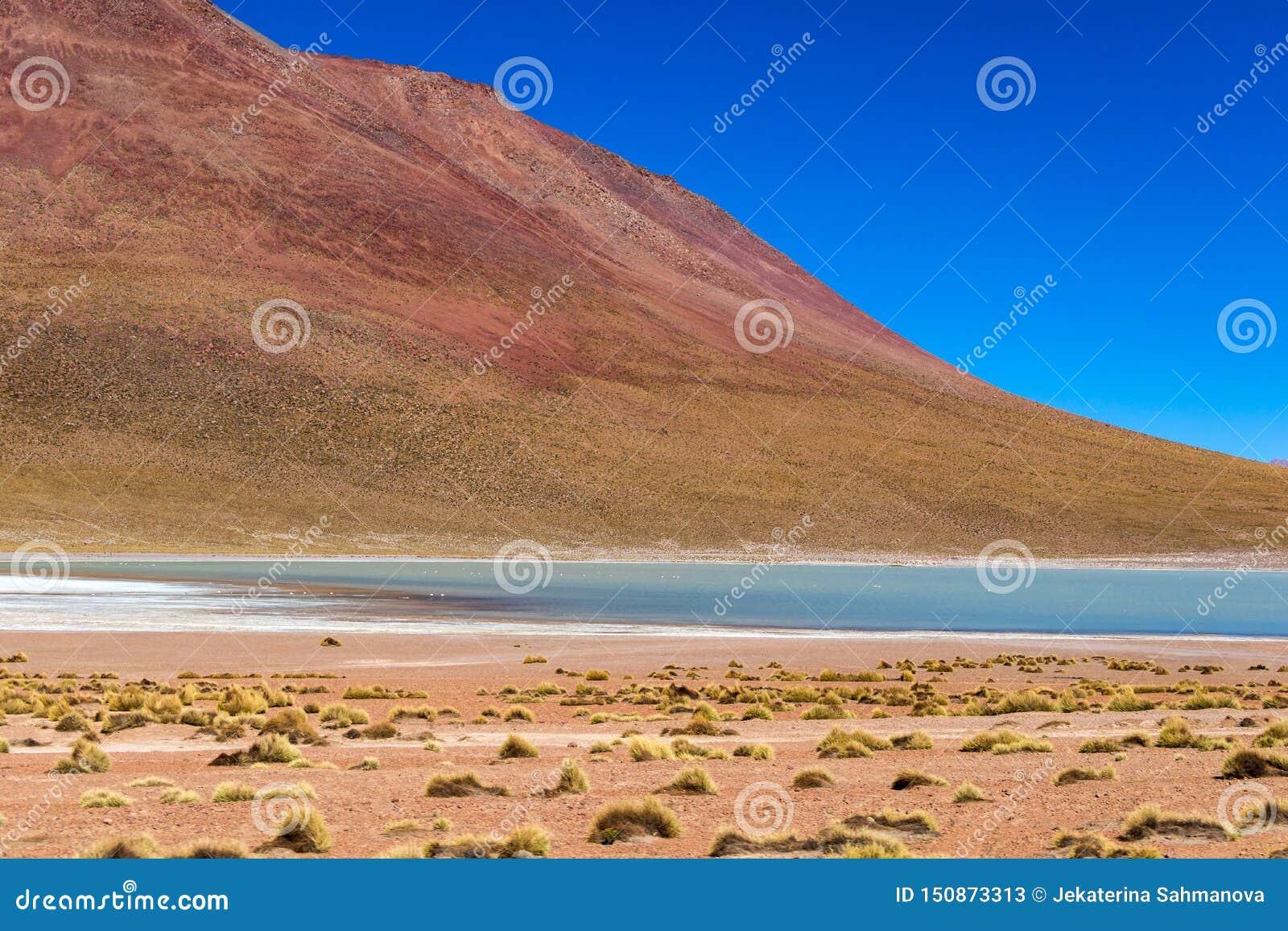 Θολωμένο υπόβαθρο με το τοπίο βολιβιανού Altiplano