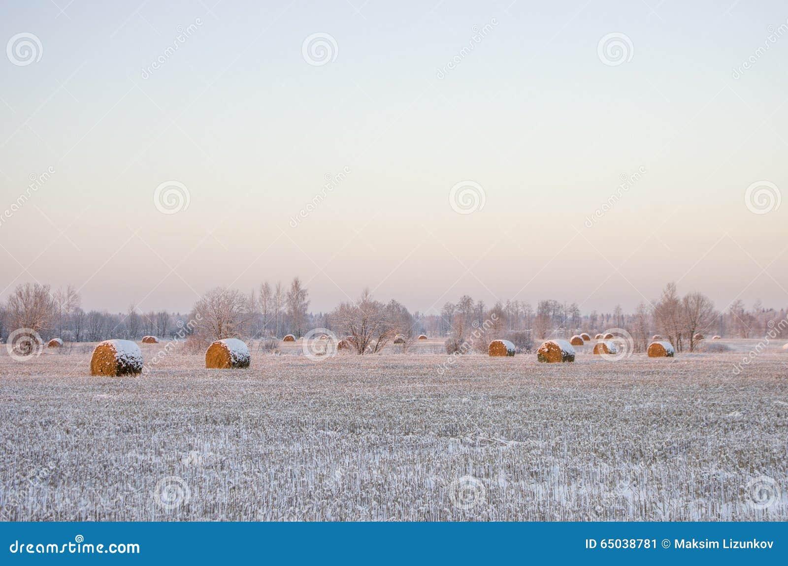Θυμωνιές χόρτου στο παγωμένο πεδίο