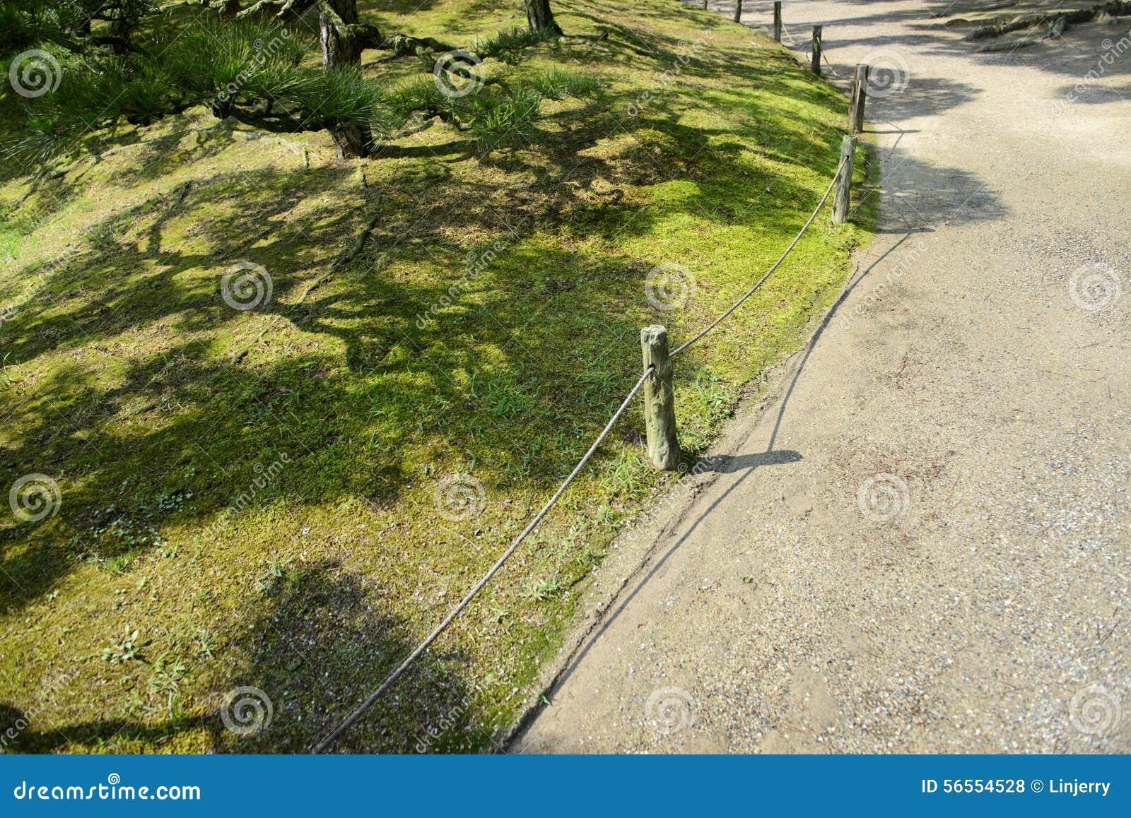 Download Ιαπωνικός κήπος με το δέντρο πεύκων Στοκ Εικόνες - εικόνα από ιαπωνικά, φυτά: 56554528