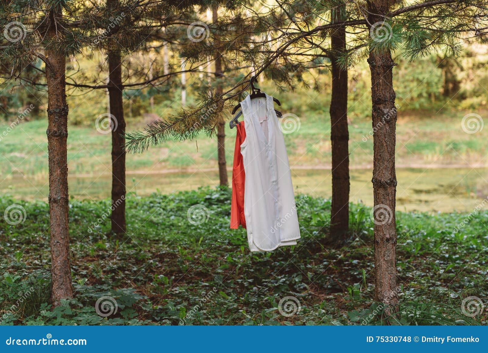 Ιματισμός γυναικών σε μια κρεμάστρα στο δάσος σε ένα δέντρο σε έναν κλάδο